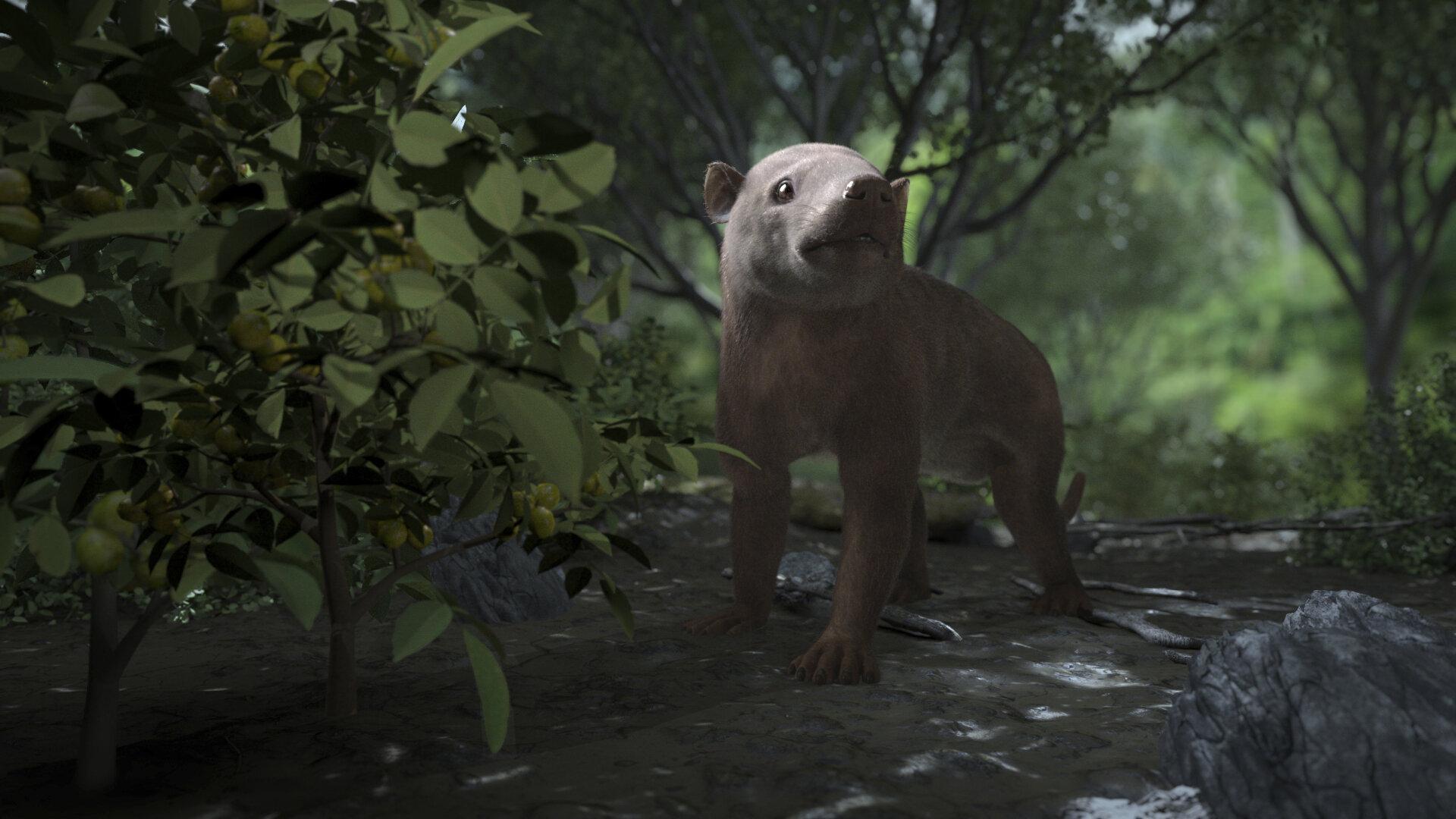 Палеонтологи показали восстановление биоразнообразия после вымирания динозавров