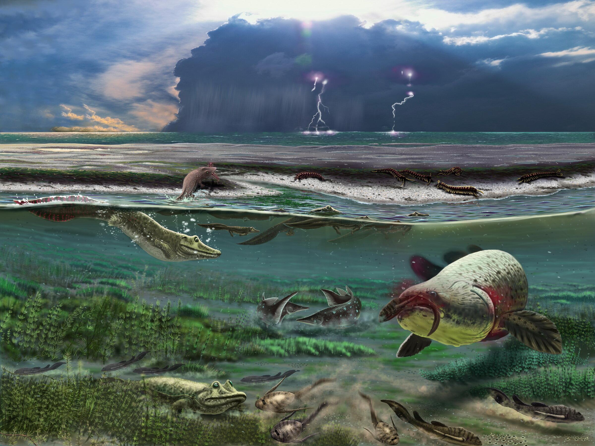 Ранние водные четвероногие наблюдали за обитателями суши, выглядывая из воды