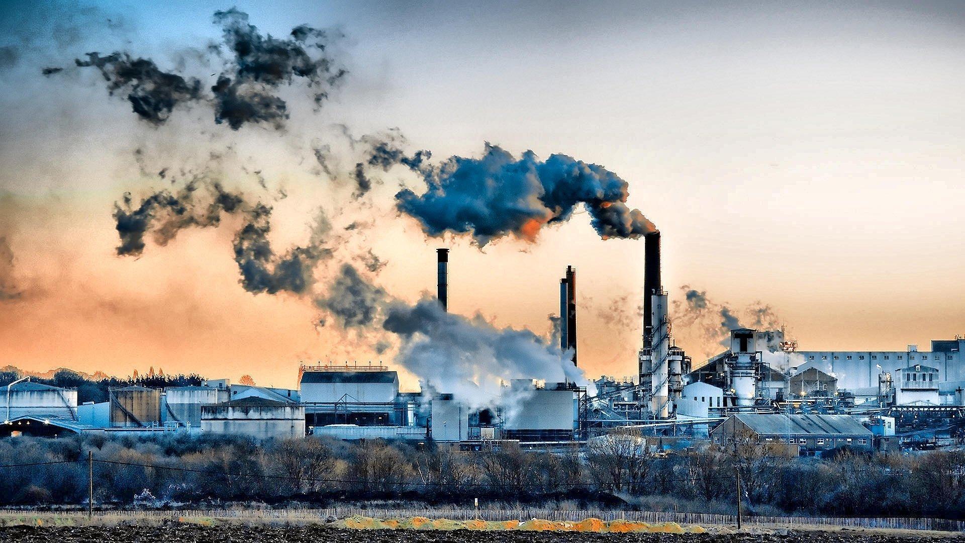 Загрязнение среды портит иммунитет на несколько поколений вперёд