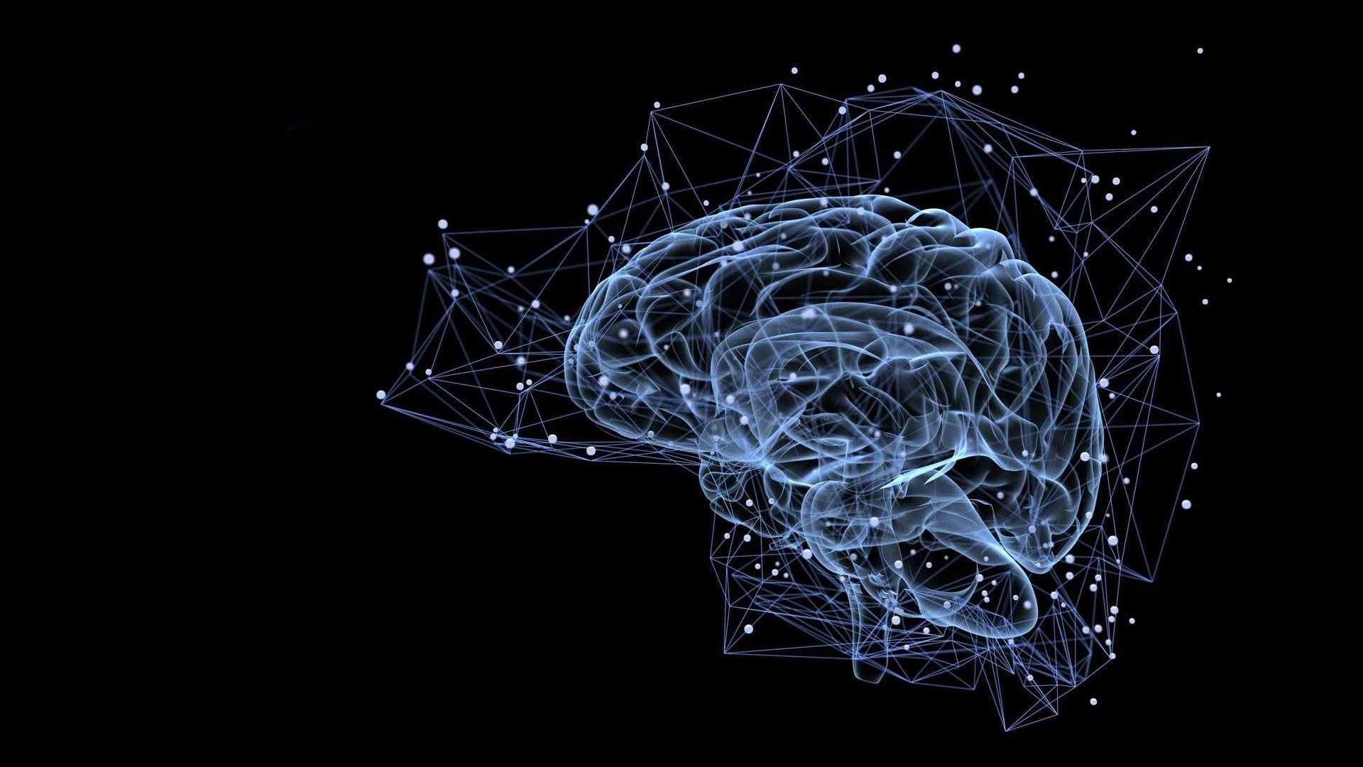Ученые объяснили, как формируются воспоминания