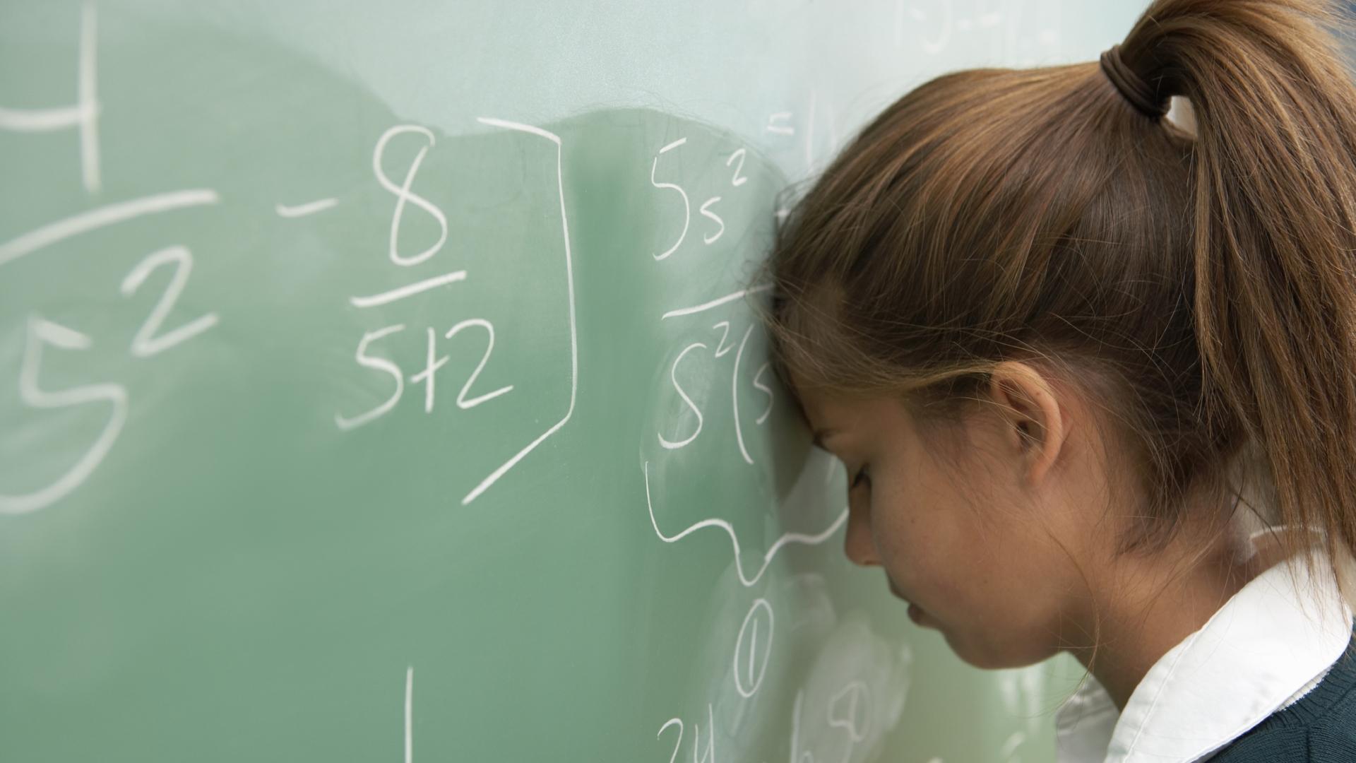 Мальчики и девочки делают это одинаково. Способности девочек в математике ничем не отличаются