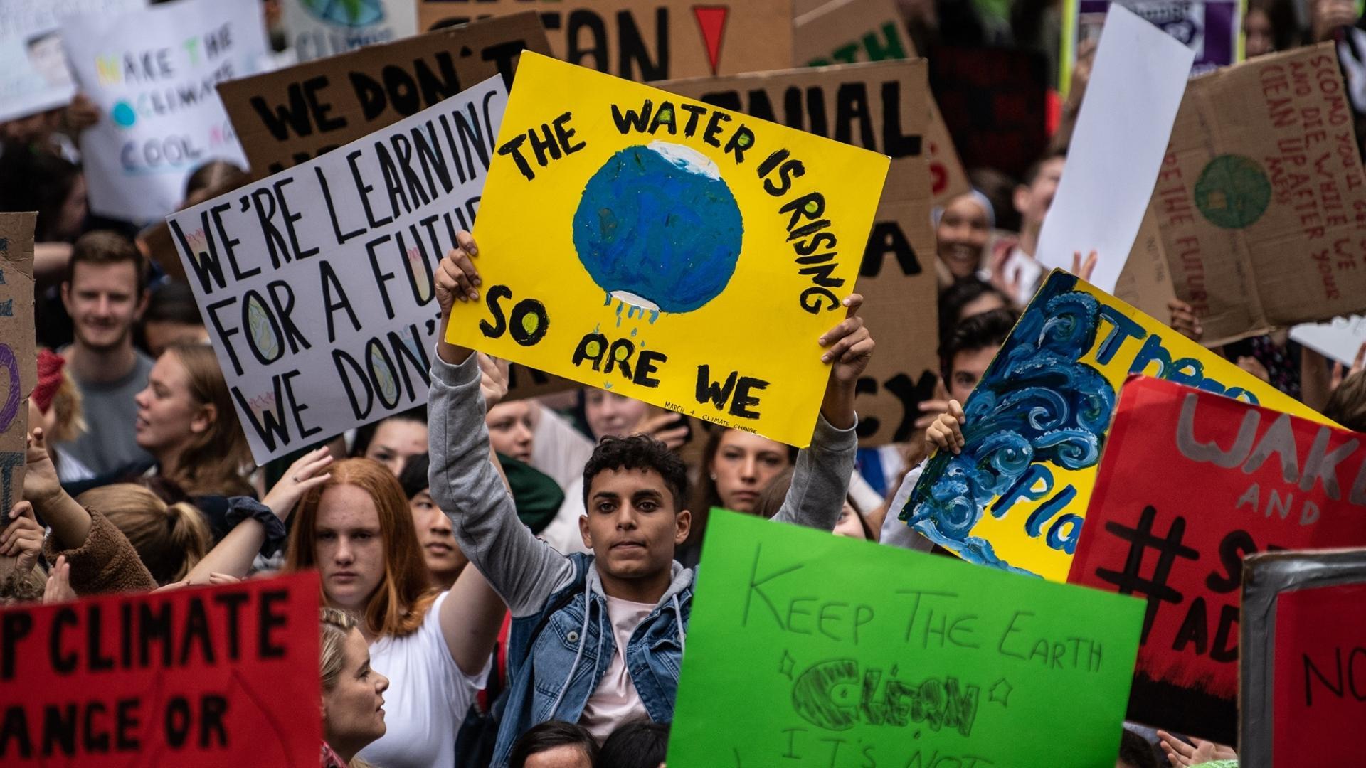 11 тысяч учёных из 153 стран мира объявили «климатическую чрезвычайную ситуацию»