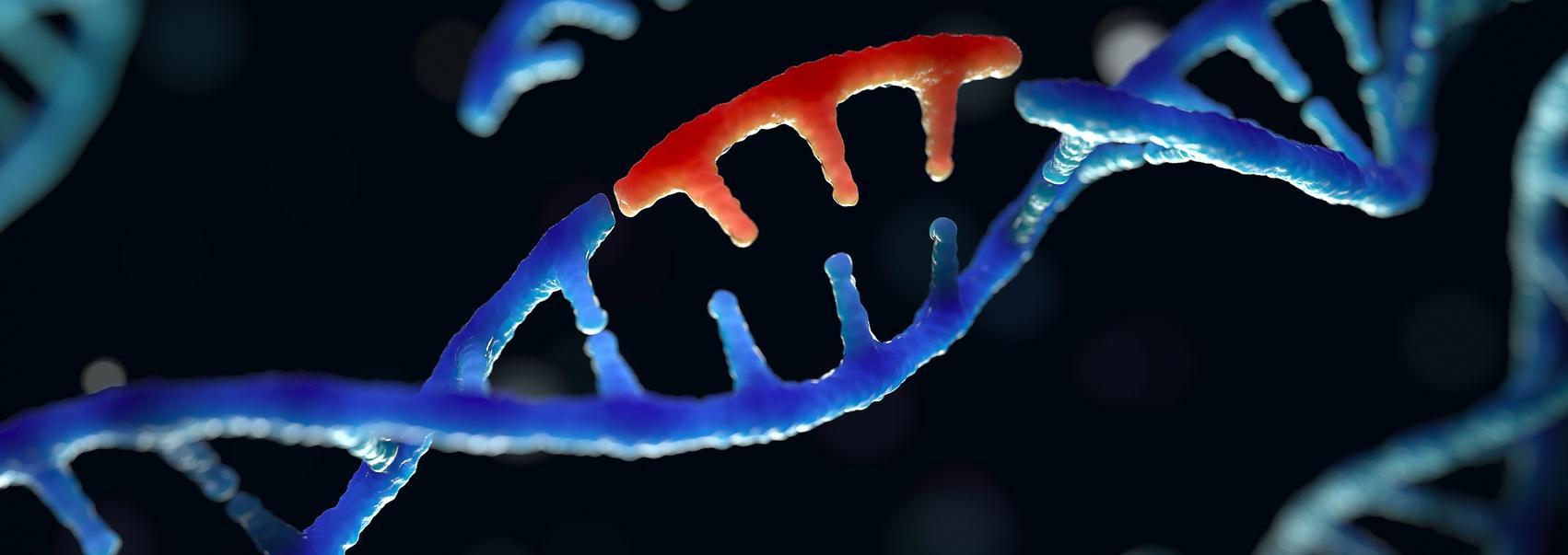 Ученые описали новую болезнь. Раскрываем подробности