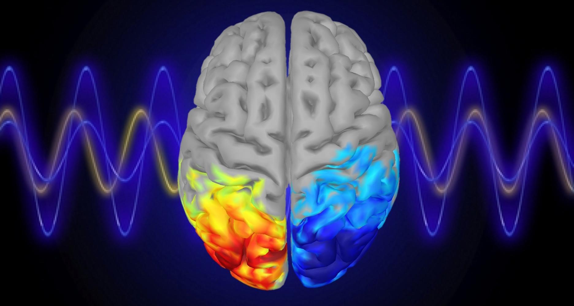 Обратная связь поможет управлять концентрацией внимания