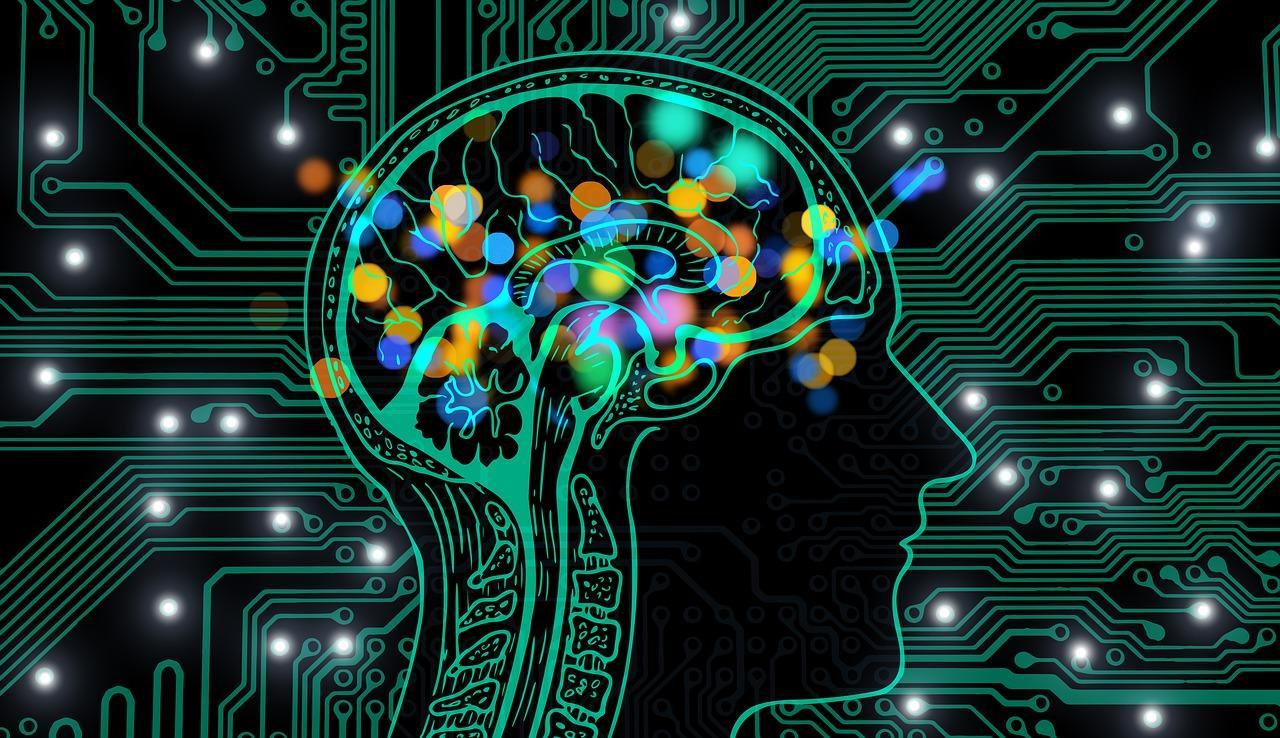 Стимуляция роста новых нейронов сохранит память в преклонном возрасте
