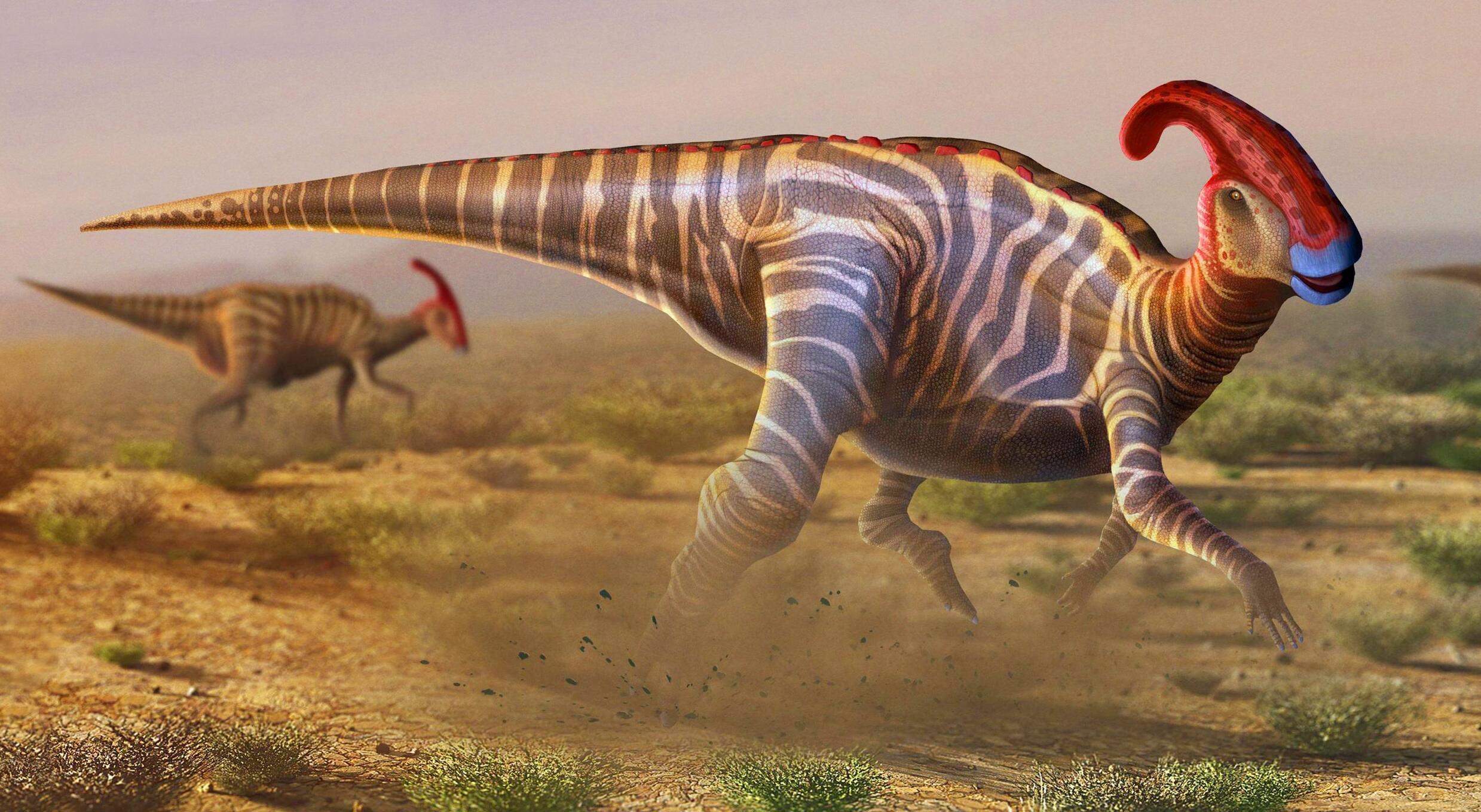 В останках динозавра обнаружили следы болезни, которая встречается до сих пор