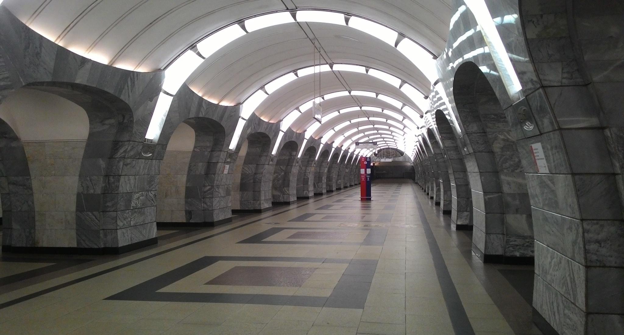 Бактериальное население метро Москвы и Нью-Йорка оказалось похожим