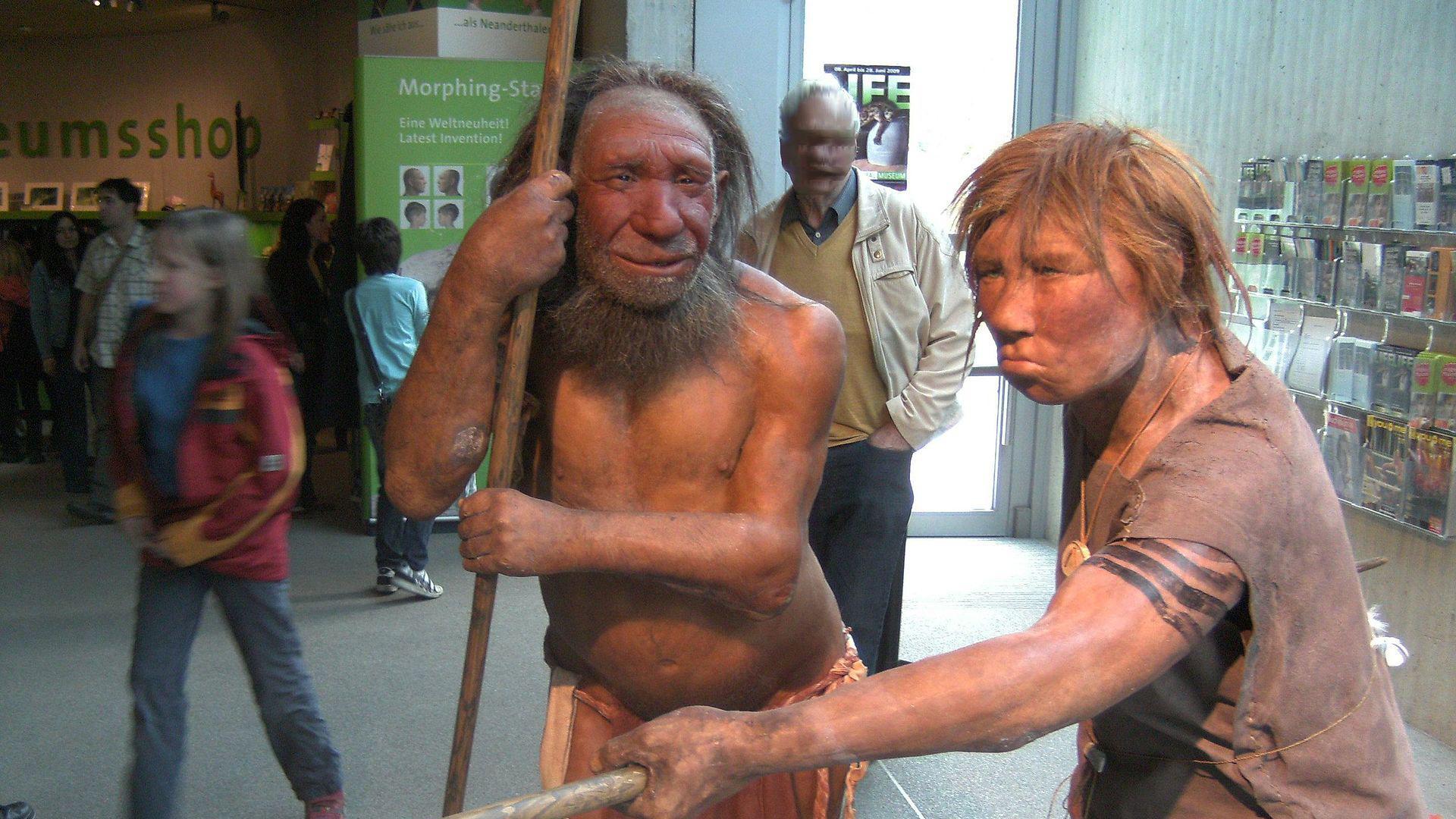 Неандерталец есть в каждом человеке