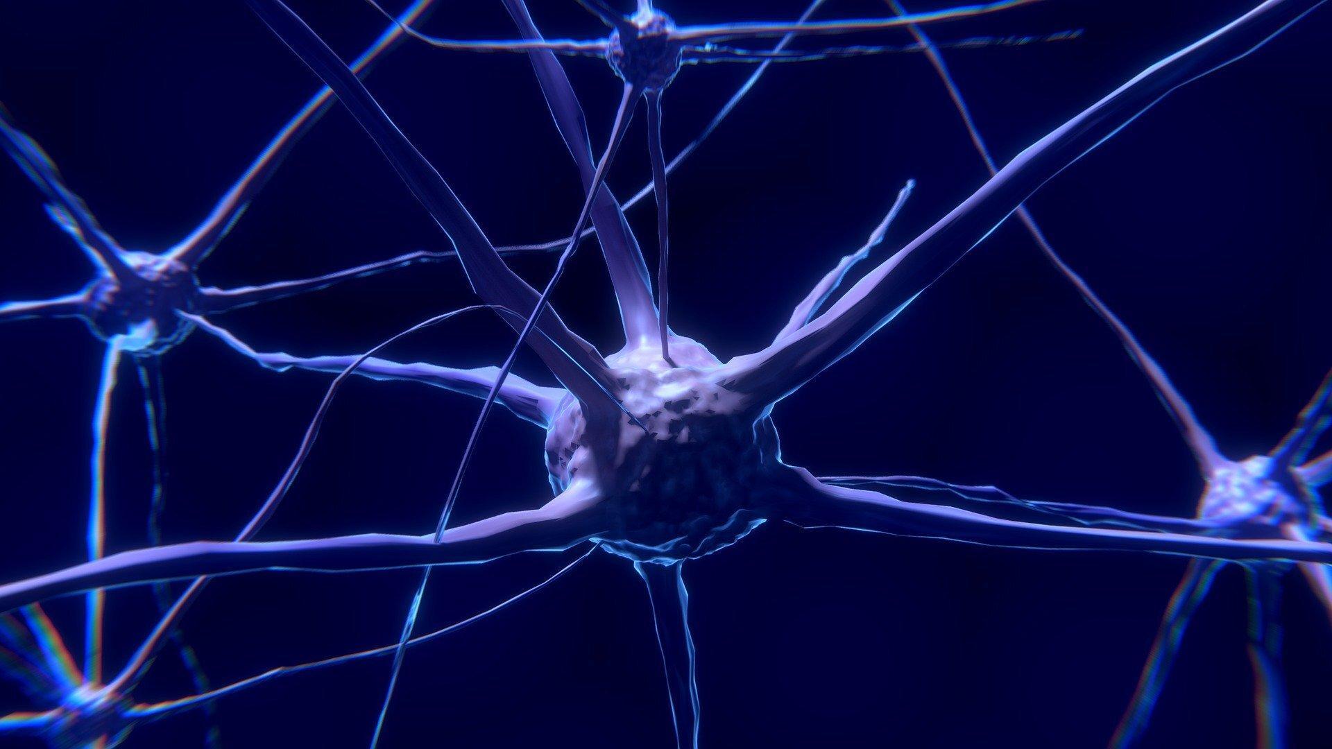 Обнаружен участок мозга, позволивший за две секунды пробудить от общего наркоза