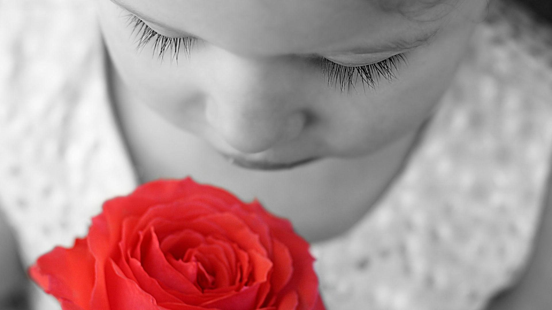 Психологи подтвердили влияние запаха роз на память
