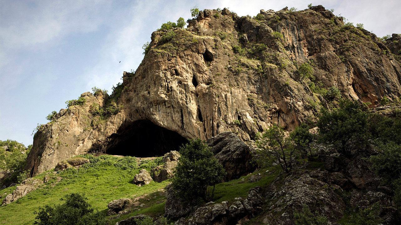 Шанидар Z: спящий неандерталец, которого не заметили