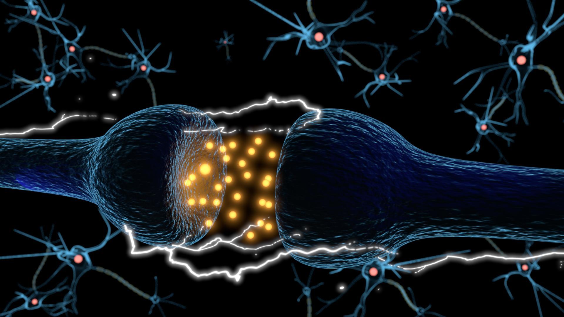 Аутоиммунные антитела подавляют депрессию
