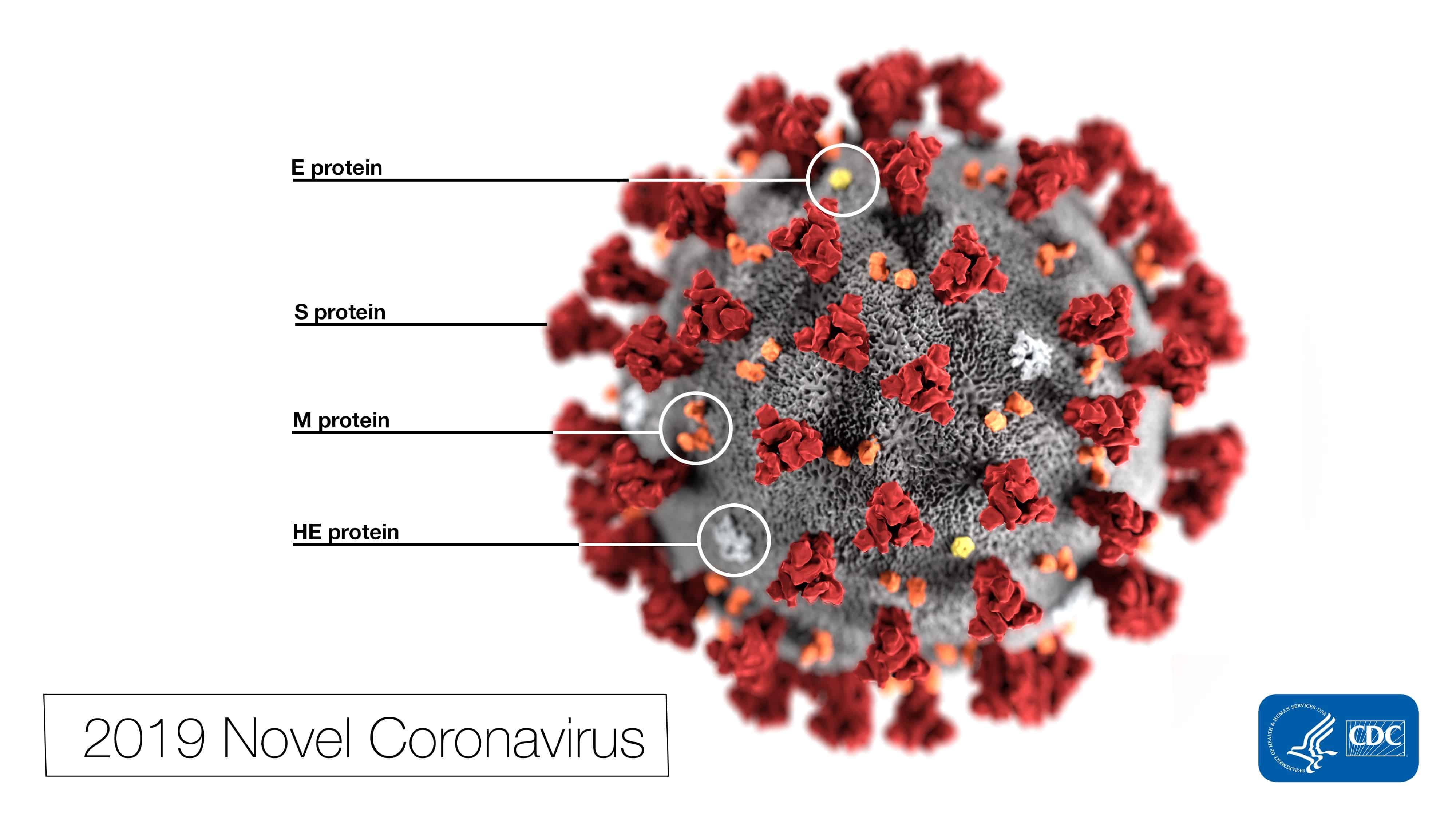 Для коронавируса подбирают лекарства