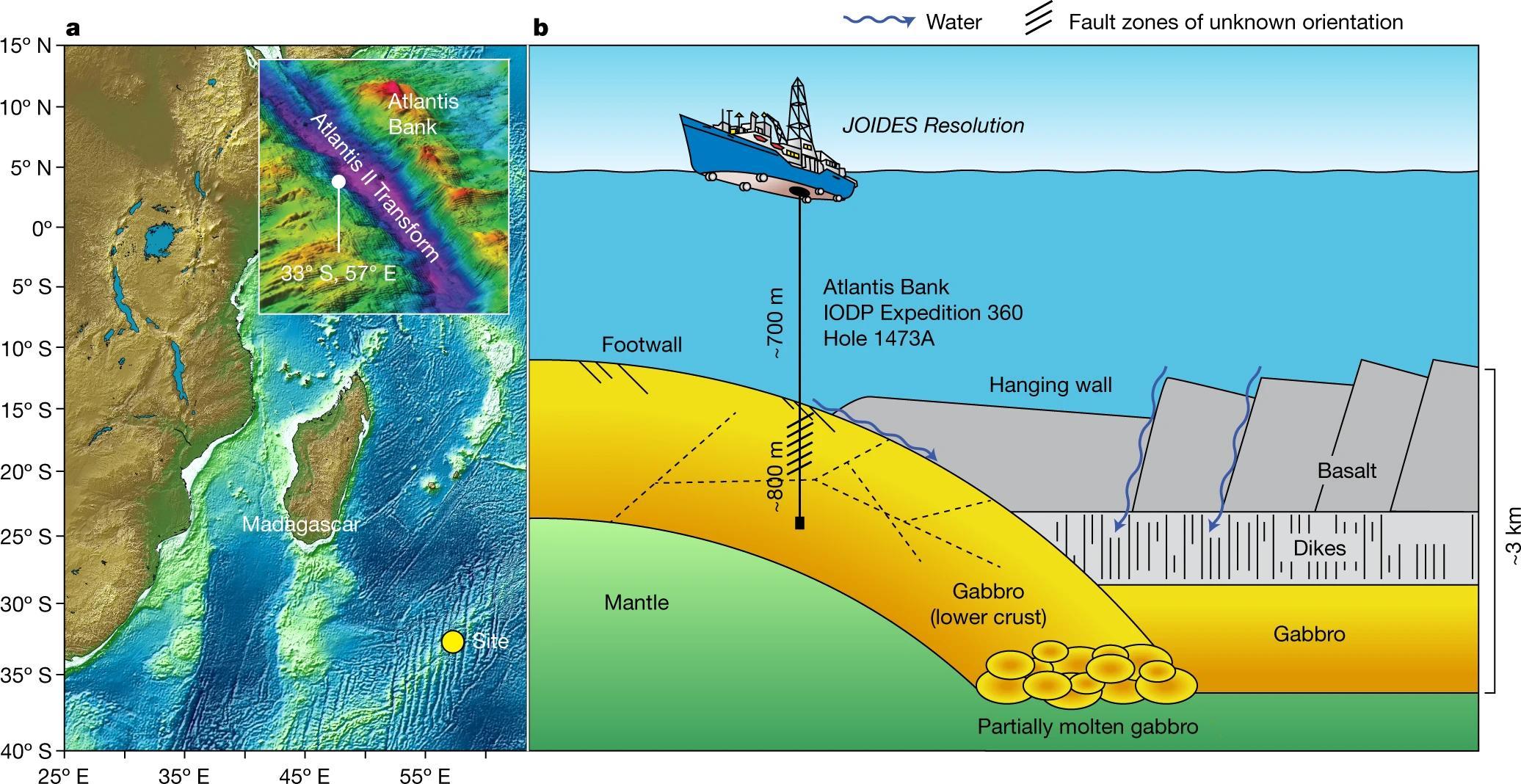 Ученые обнаружили микробов живущих ниже океанического дна