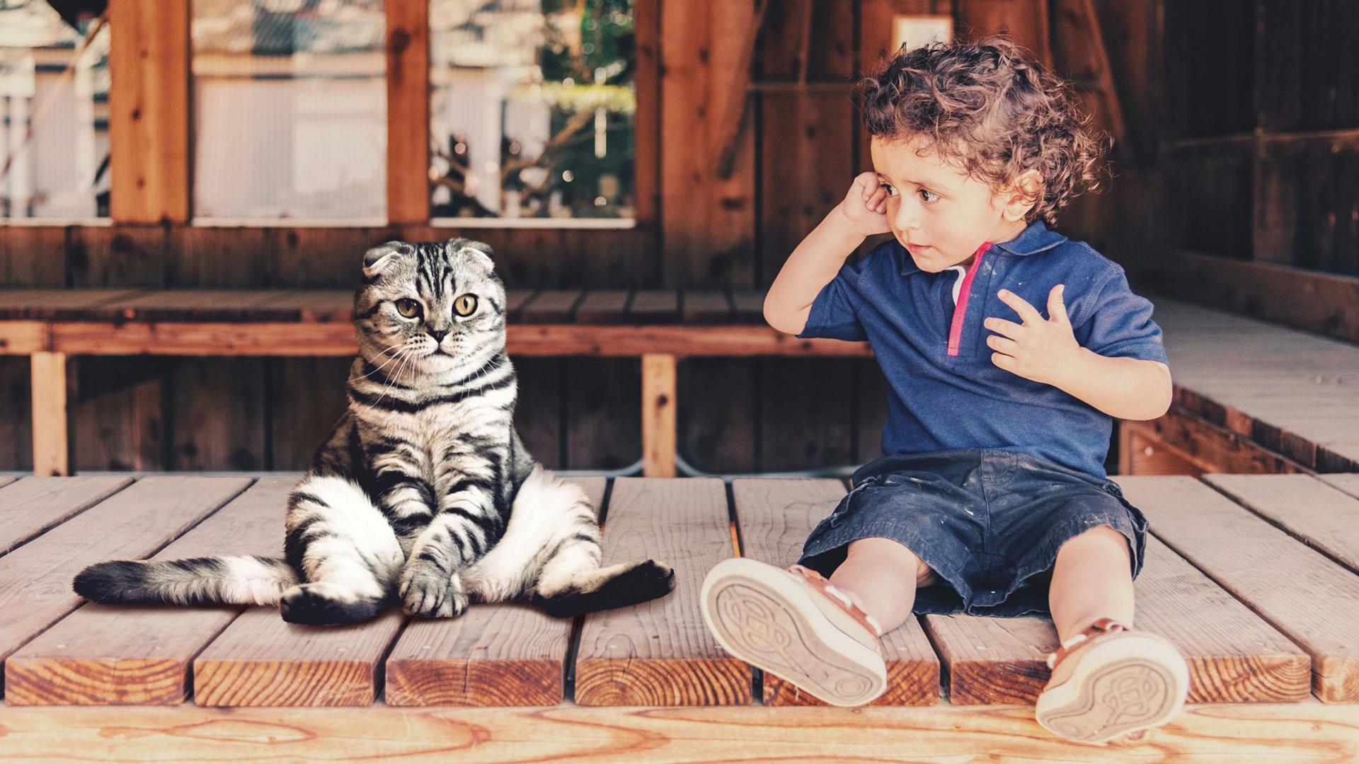 В детском мозге обнаружили две системы для представления суждений других людей