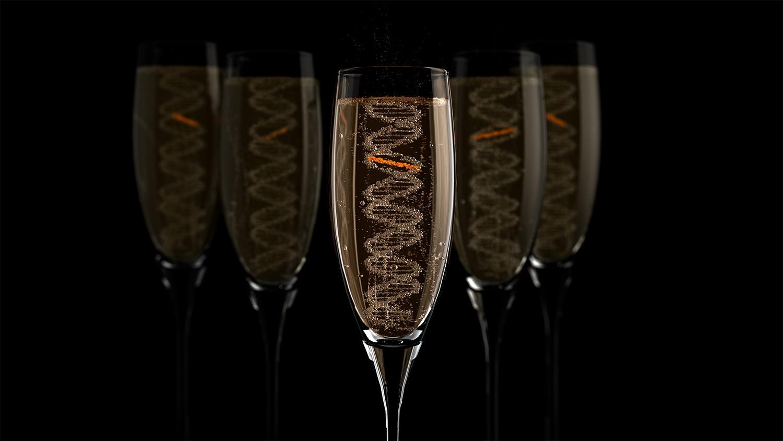 Как ДНК избавляется от алкогольных повреждений