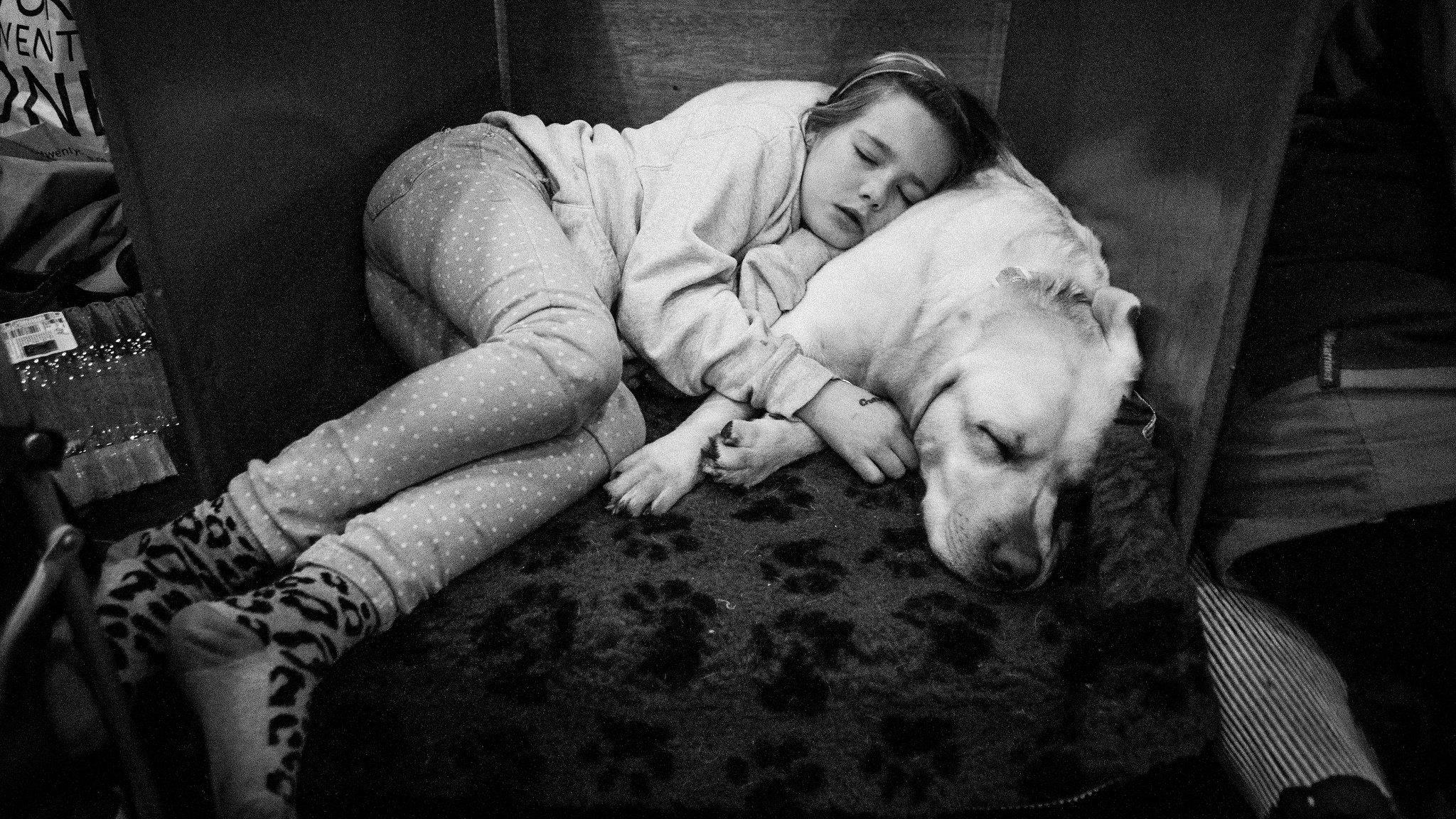 Сон не является необходимым для создания долгосрочных воспоминаний