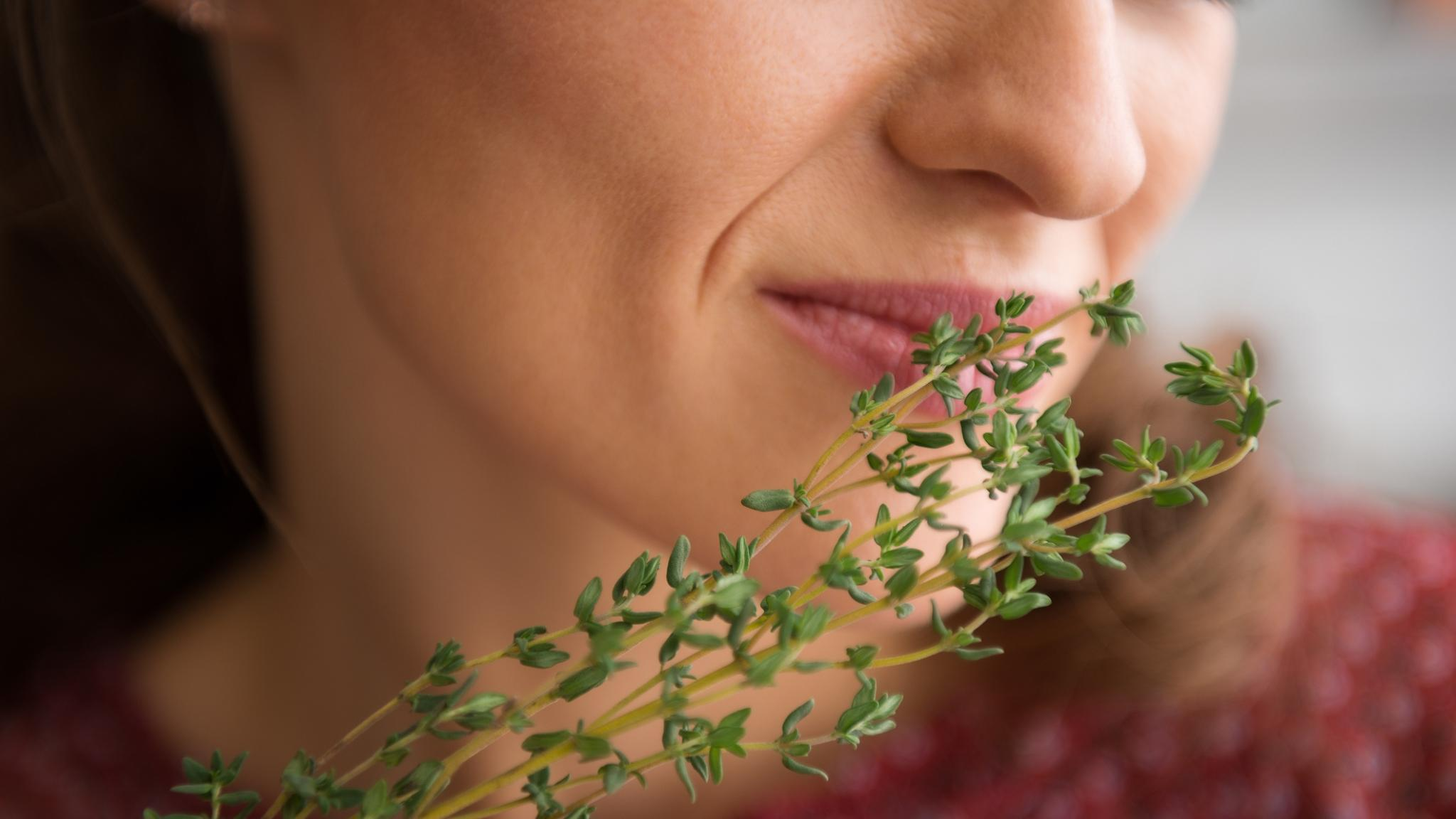 Это было как вчера: почему запахи усиливают воспоминания?