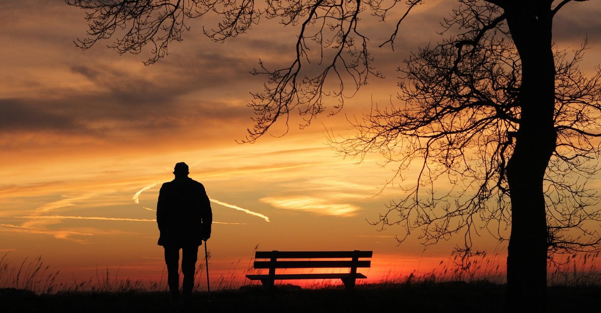 Недостаток природного освещения помешал формированию долговременной памяти