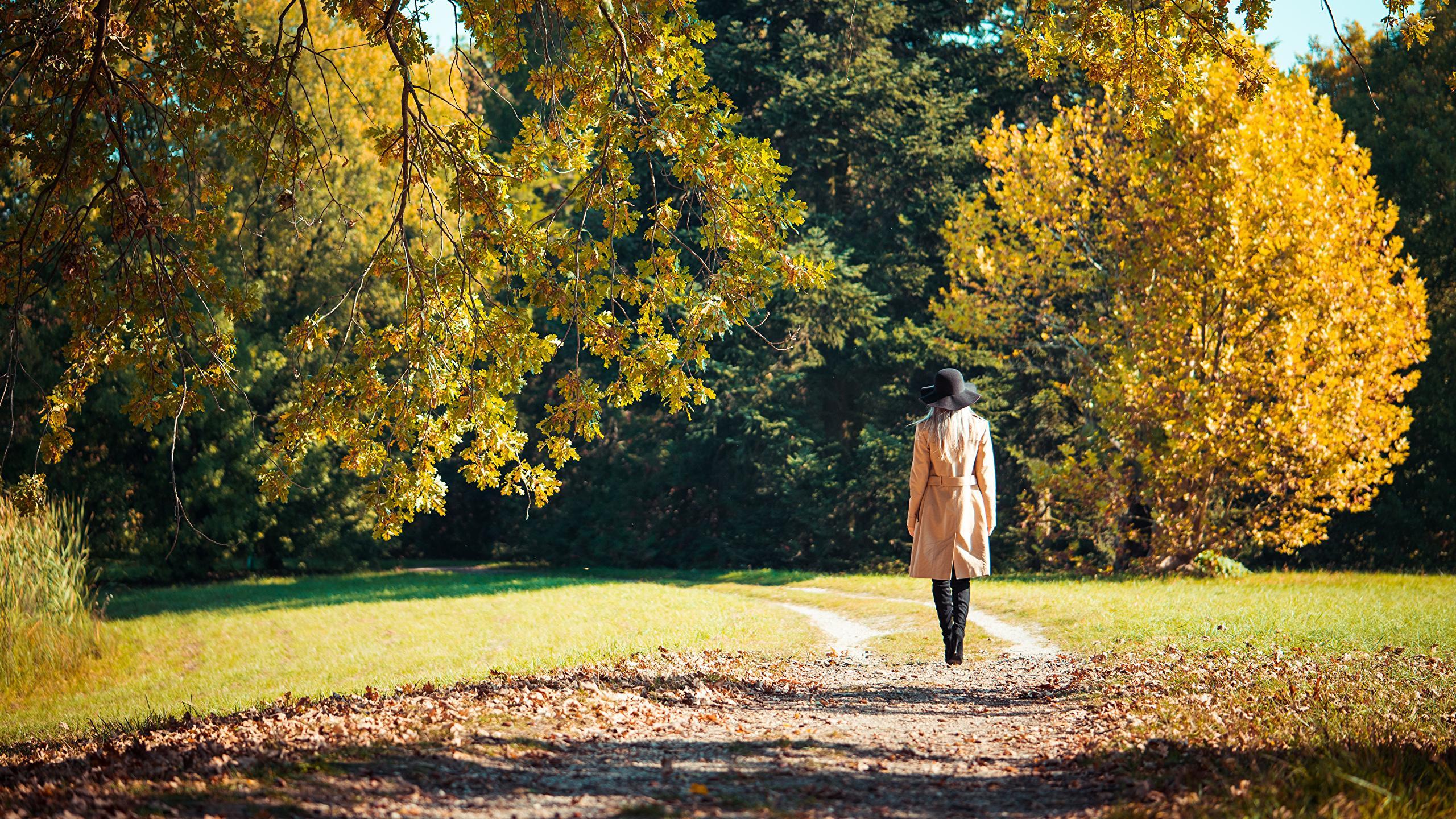 Двадцатиминутная прогулка на свежем воздухе снизила уровень стресса