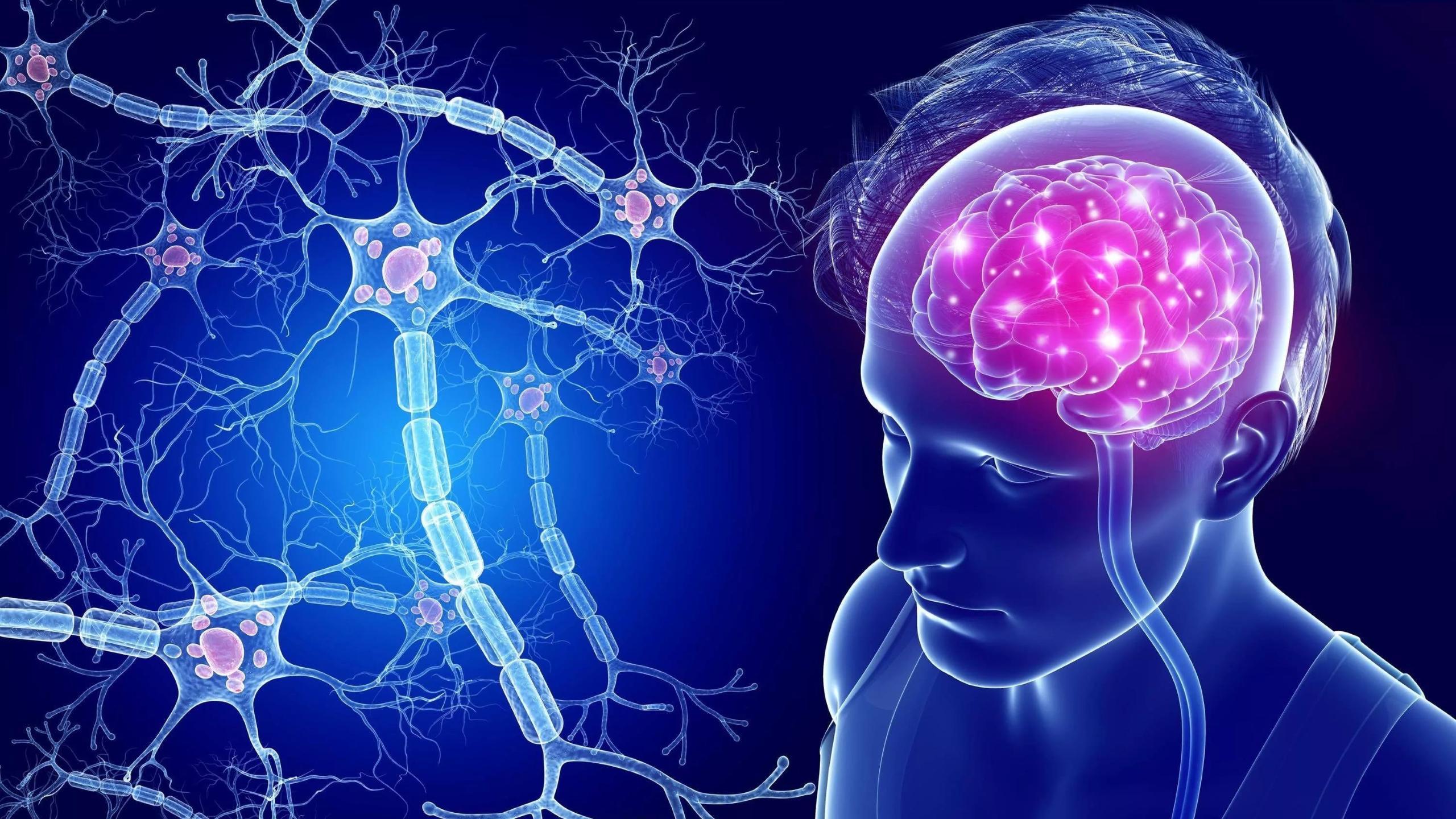 Исследователи оценили спектр поражений нервной системы при COVID-19