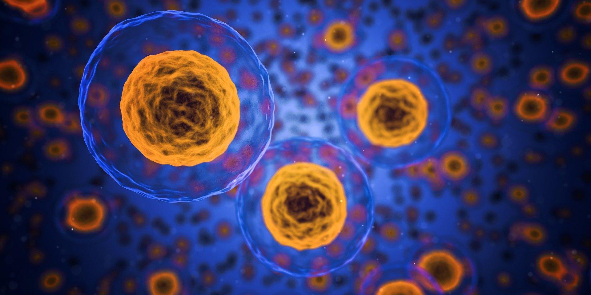 Противовирусное воспаление начинается из-за прыгающей ДНК