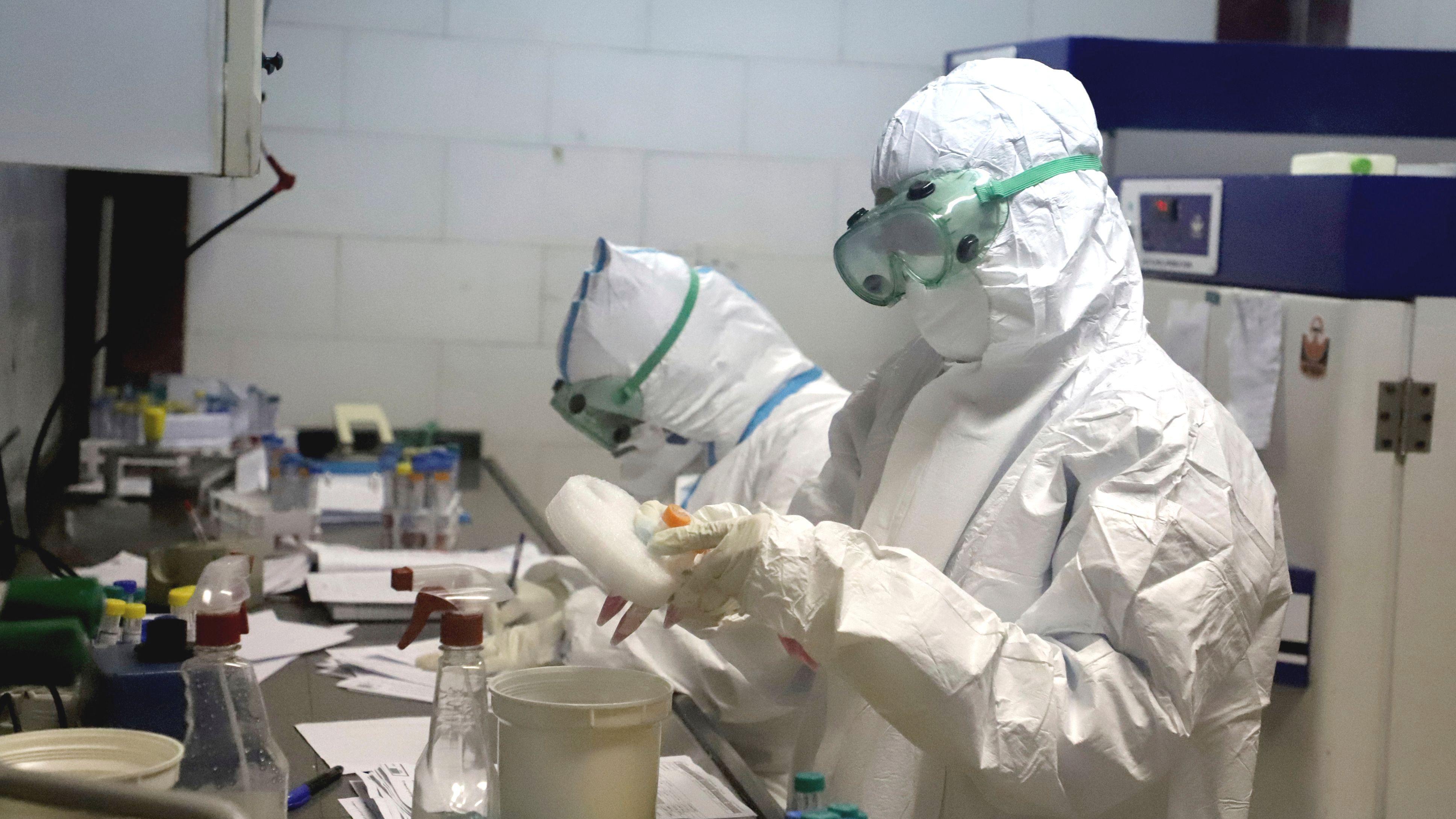 Три генетических типа коронавируса помогли ученым выяснить пути пандемии Covid-19