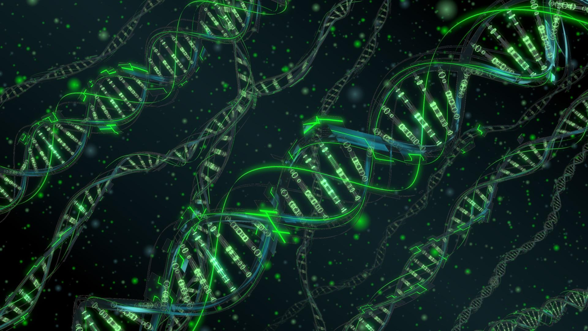 Ученые предложили новую методику коррекции генов в утробе матери