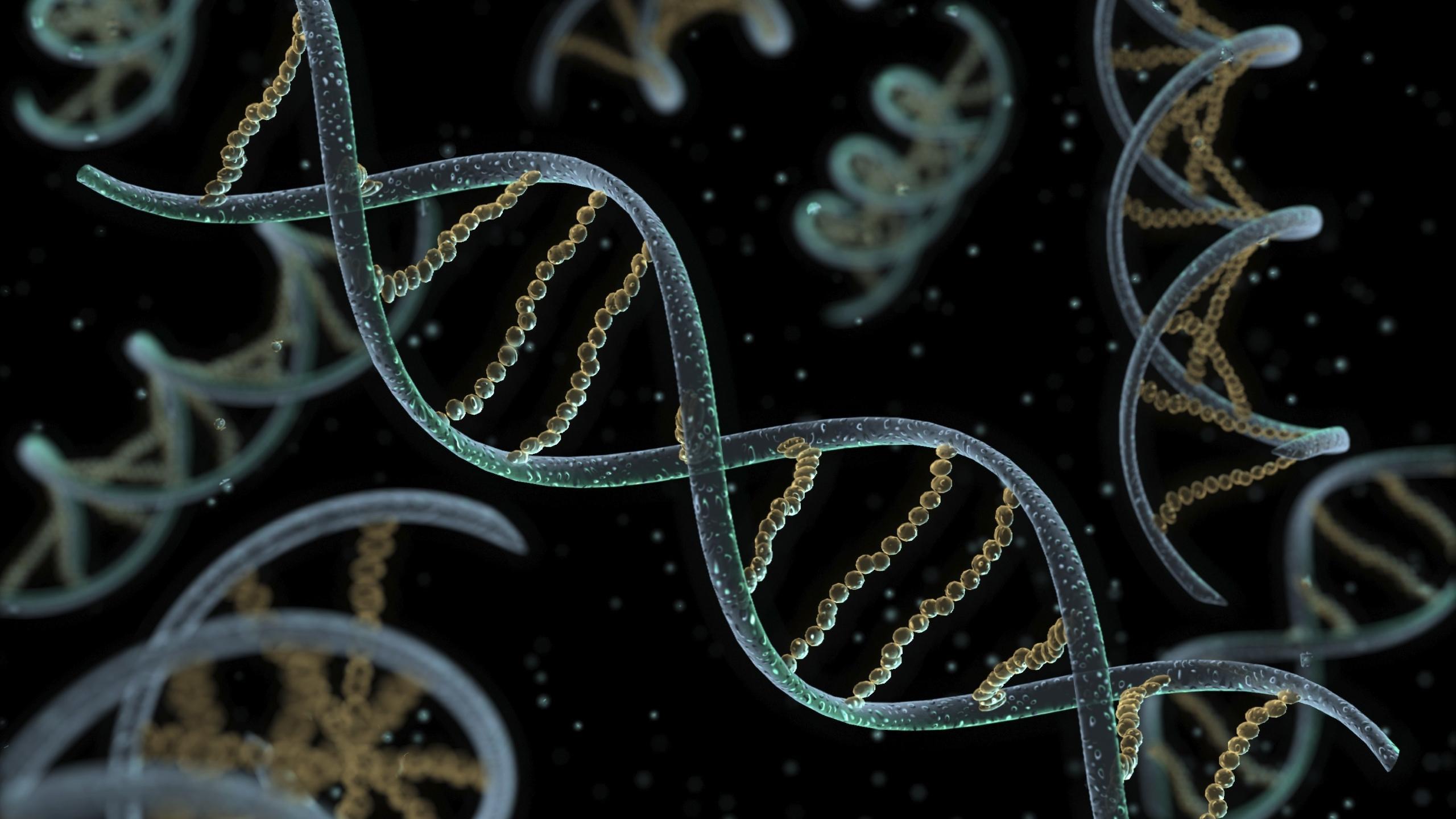 Сколько вирусов в нашей ДНК