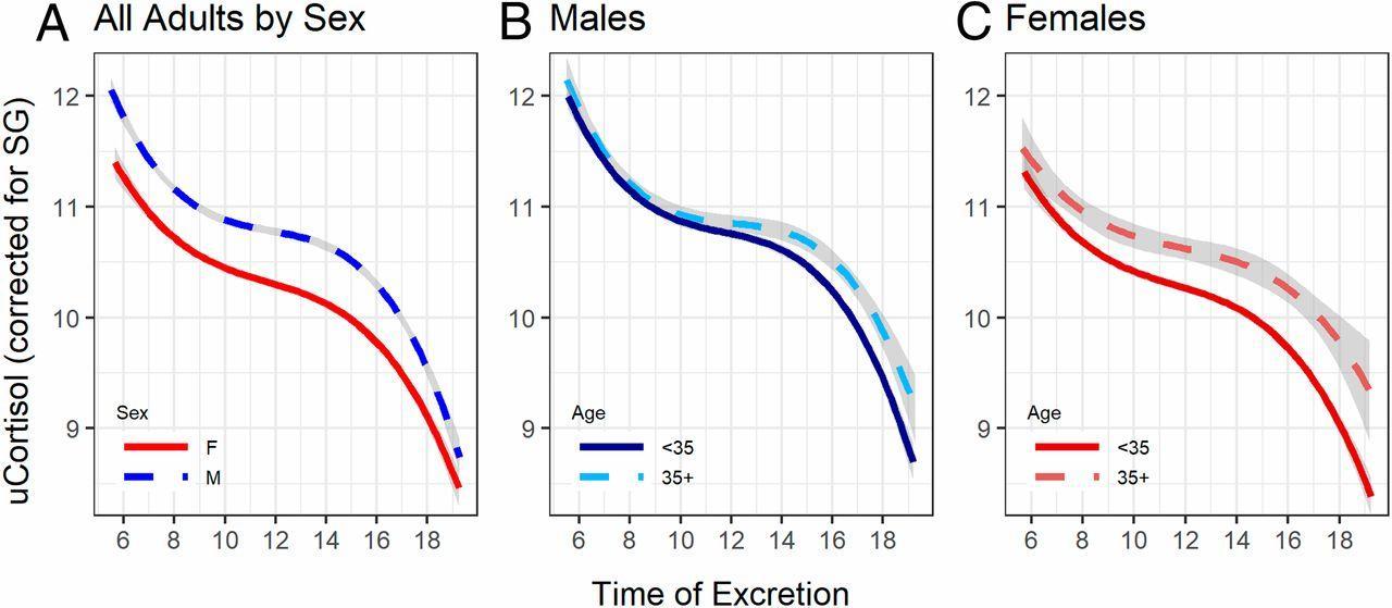 Кортизоловое старение шимпанзе оказалось похожим на человеческое