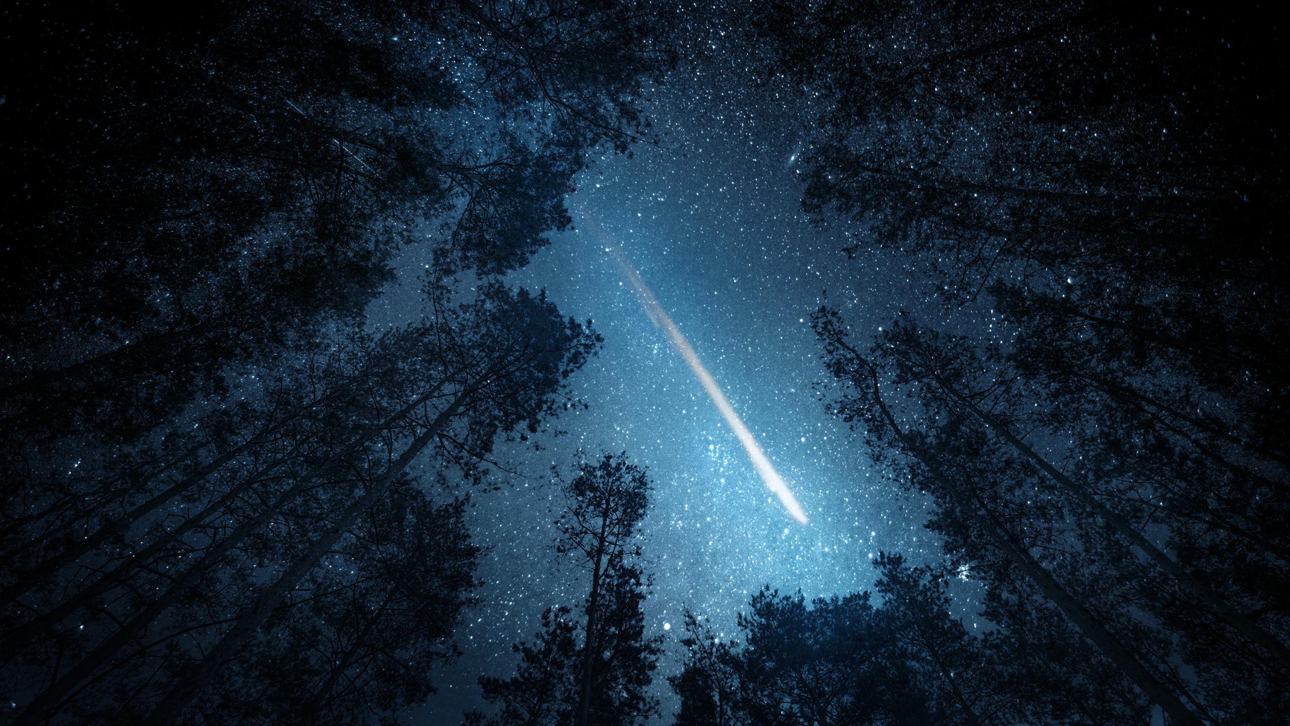 Первый «внеземной» белок в метеорите