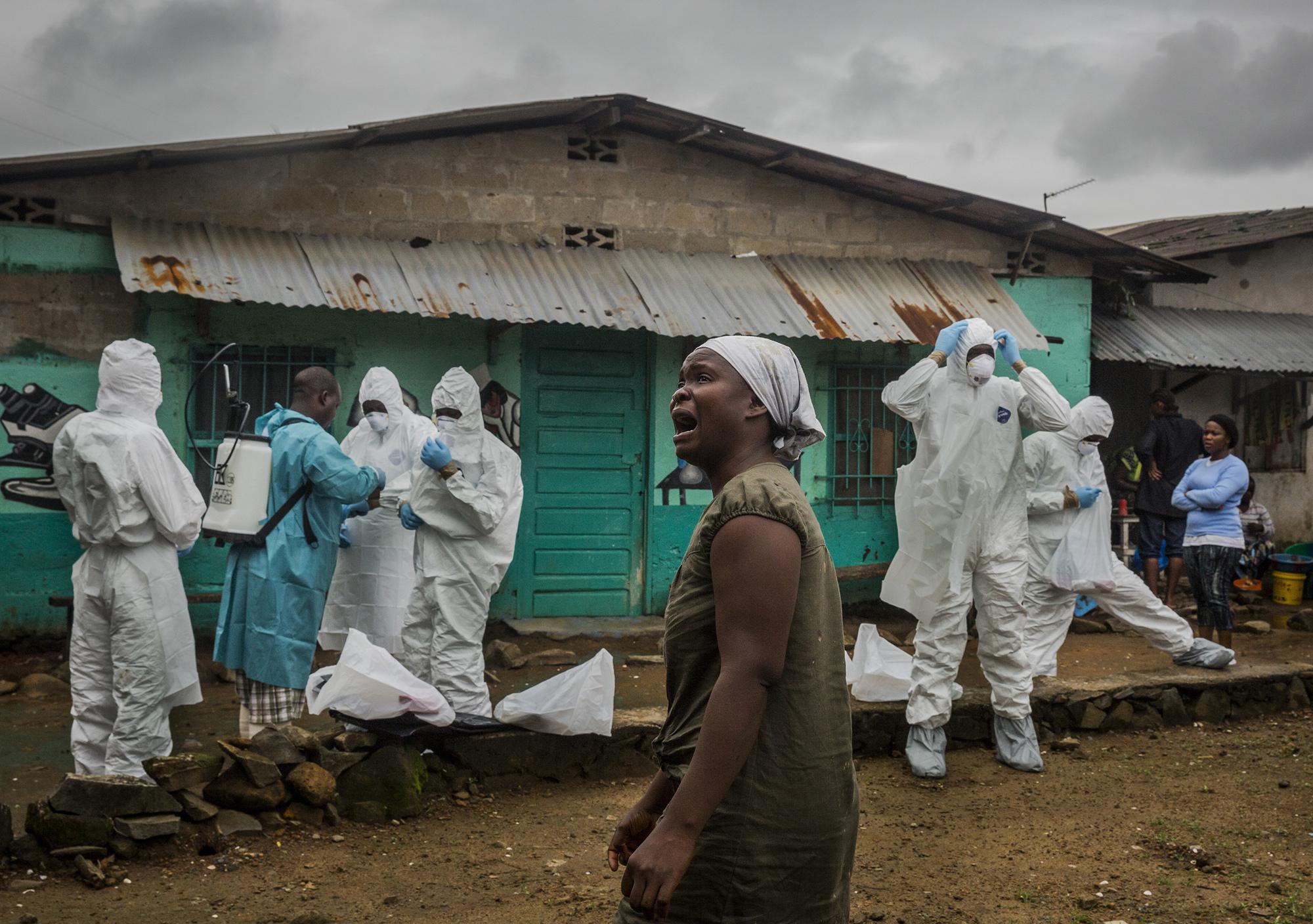Биолог Александр Жигалин: «Эпидемии – это ответ природы человеку»