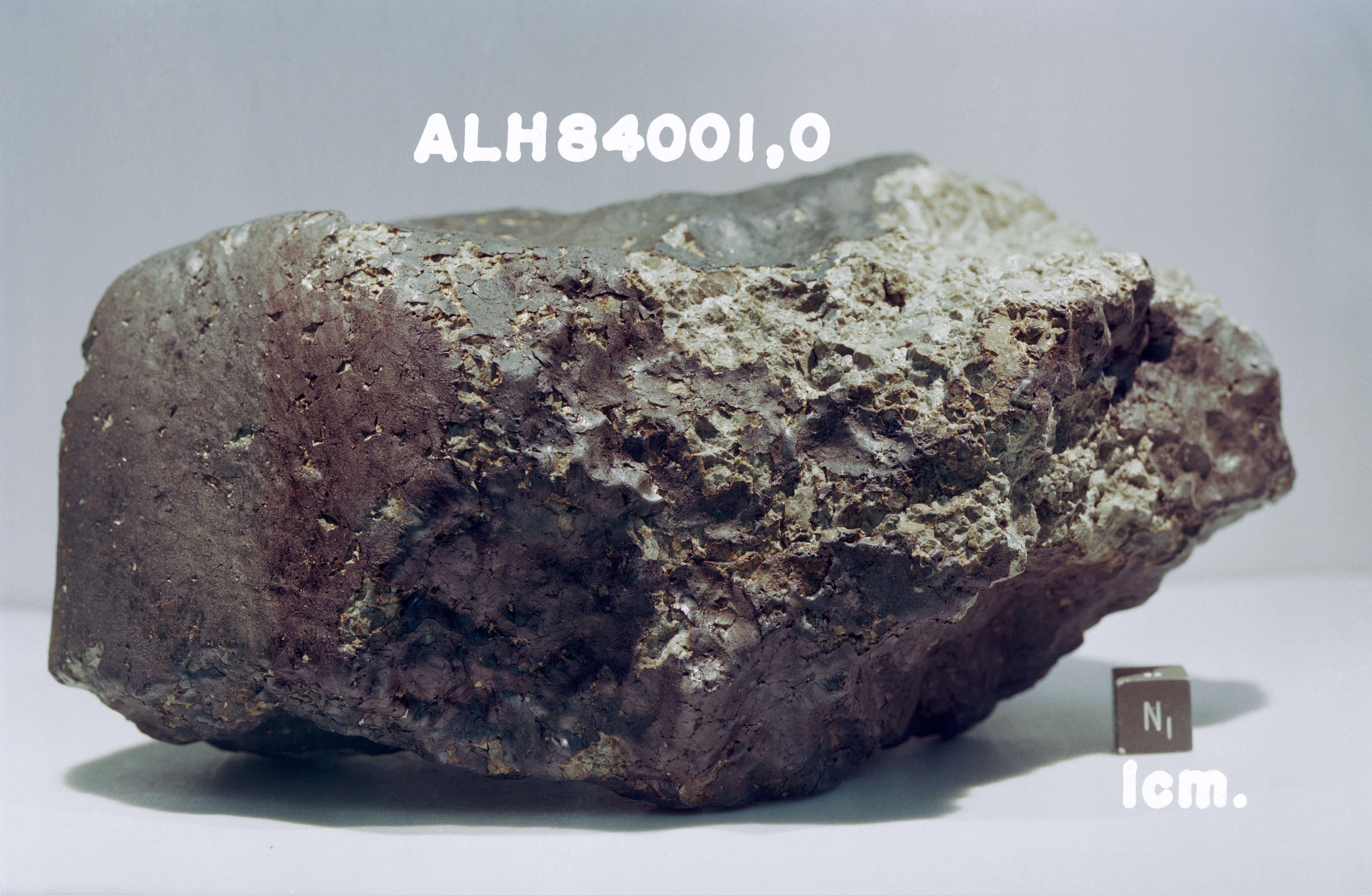 В марсианском метеорите обнаружили древние органические молекулы