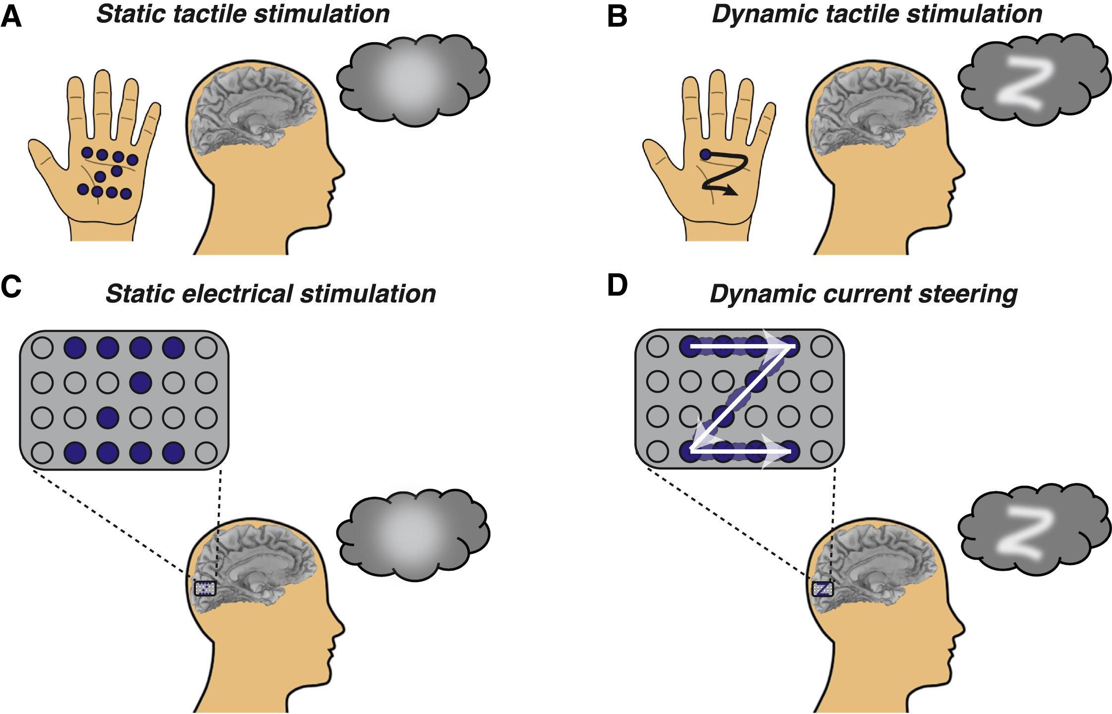 Стимуляция зрительной коры заставила слепых видеть буквы
