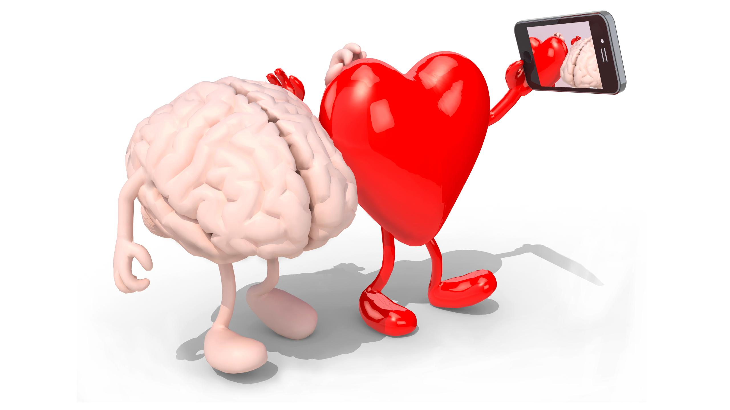 Как сердце влияет на чувства
