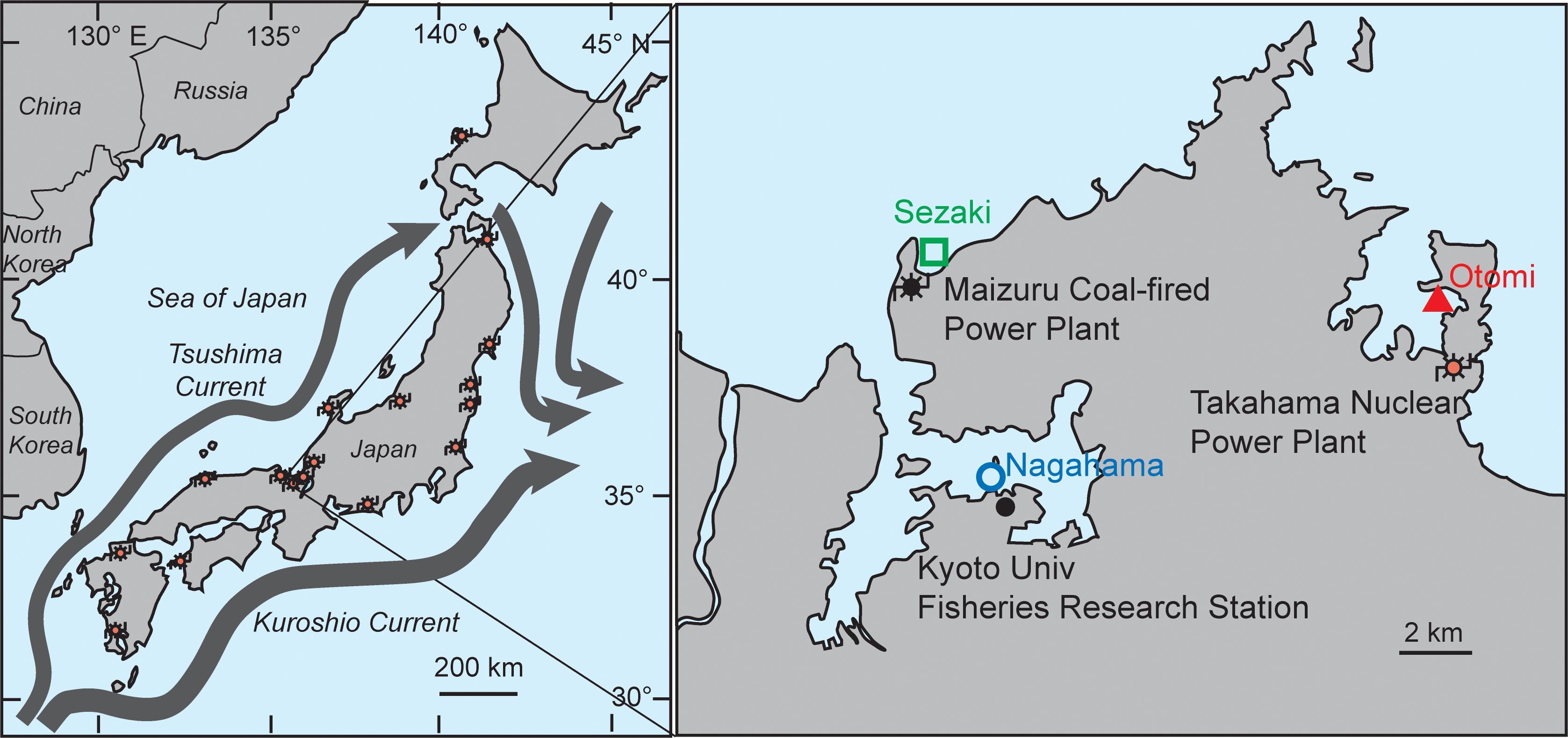 Вывод АЭС из эксплуатации привел к исчезновению тропических рыб у берегов Японии