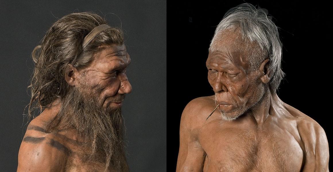 Неандертальцы начинают, сапиенсы выигрывают