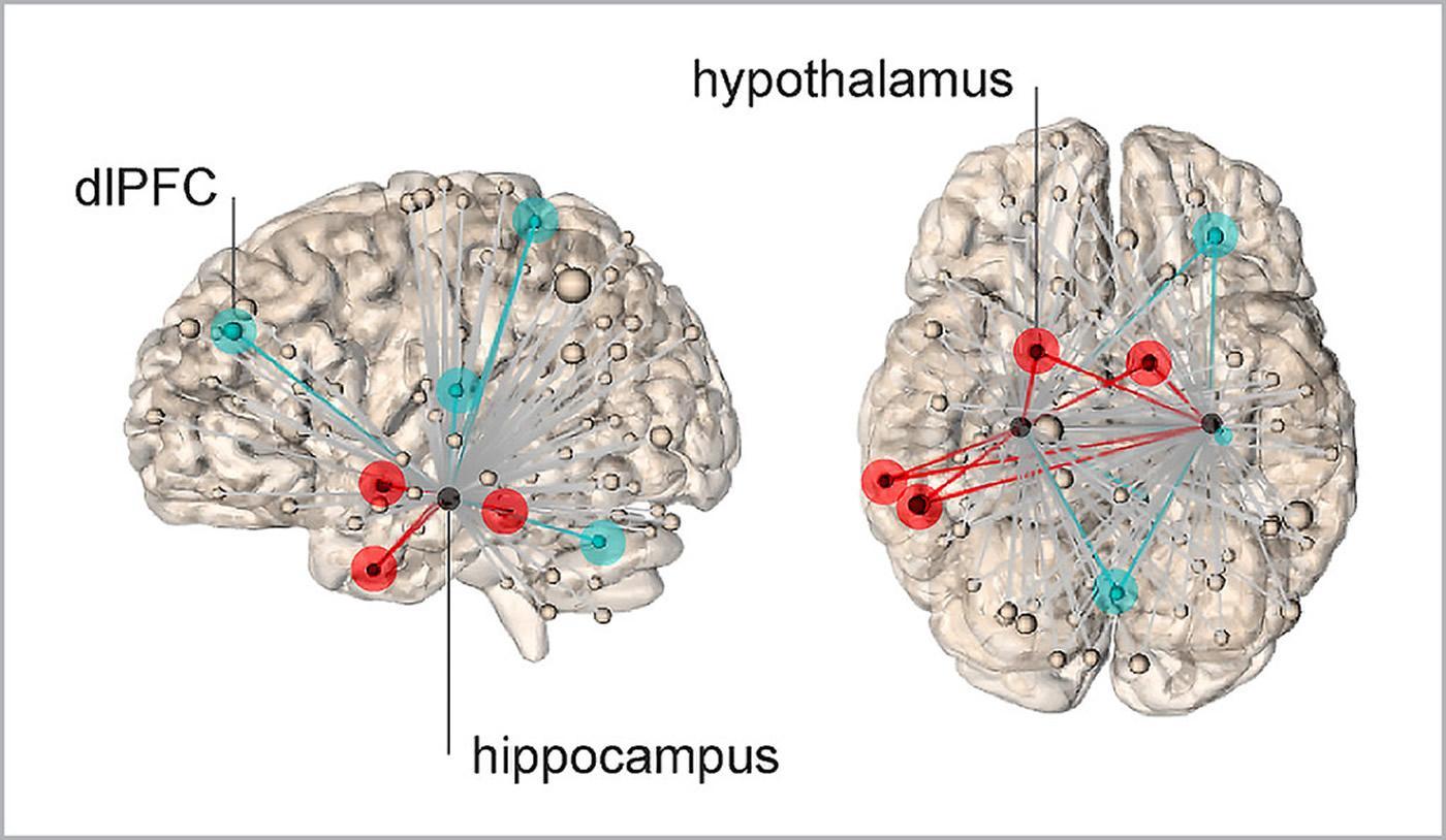 Ученые выяснили, где прячется стресс в человеческом мозге