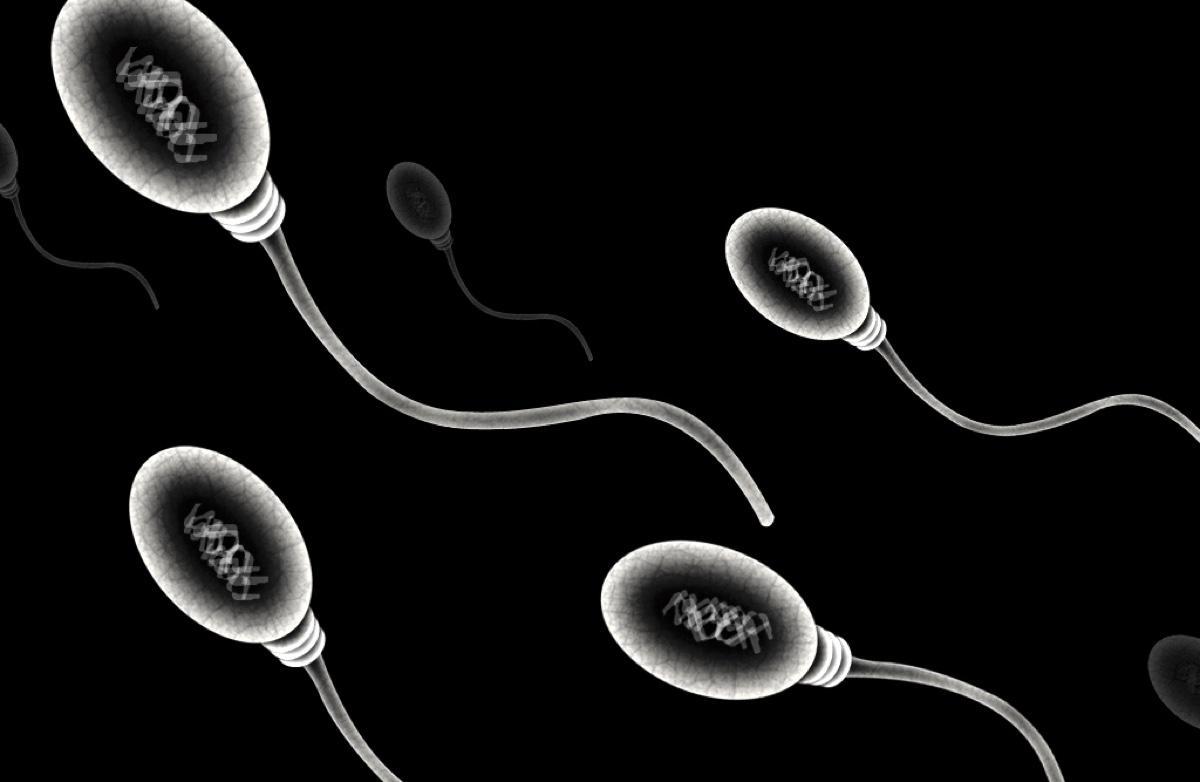 Китайские медики обнаружили коронавирус в сперме больных Covid-19