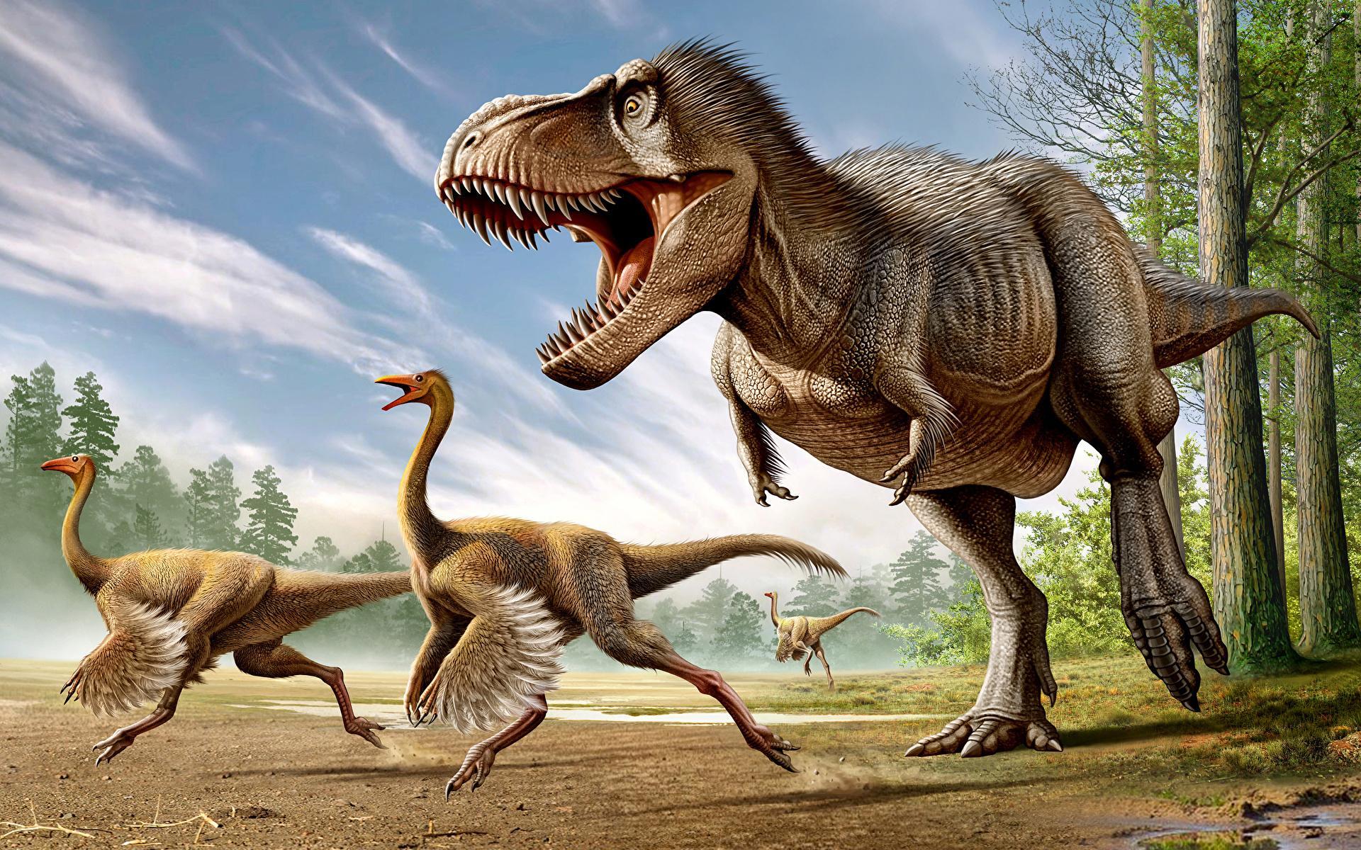 Гигантские хищные динозавры оказались марафонцами