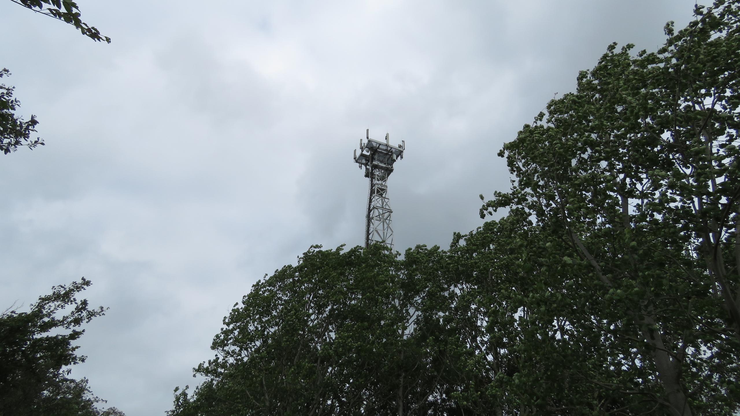 5G, вирусы и птицы: как эпидемия поражает вышки сотовой связи