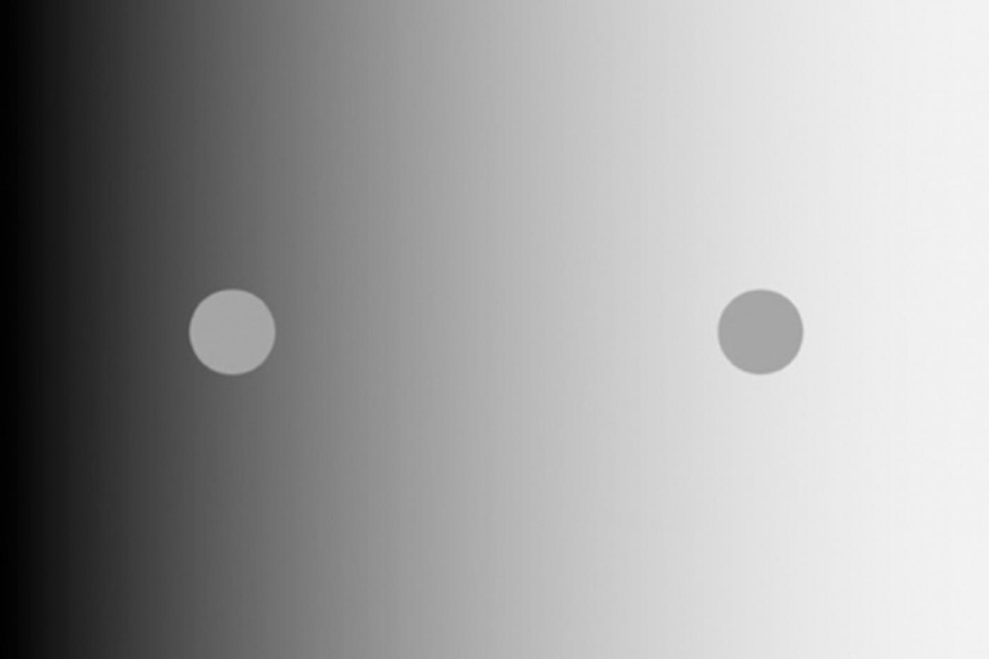 Нейробиологи объяснили механизм, лежащий в основе классической зрительной иллюзии