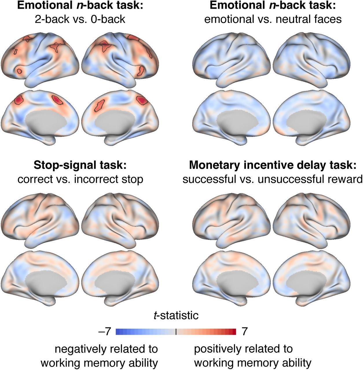 Как функционирует рабочая память в детском возрасте