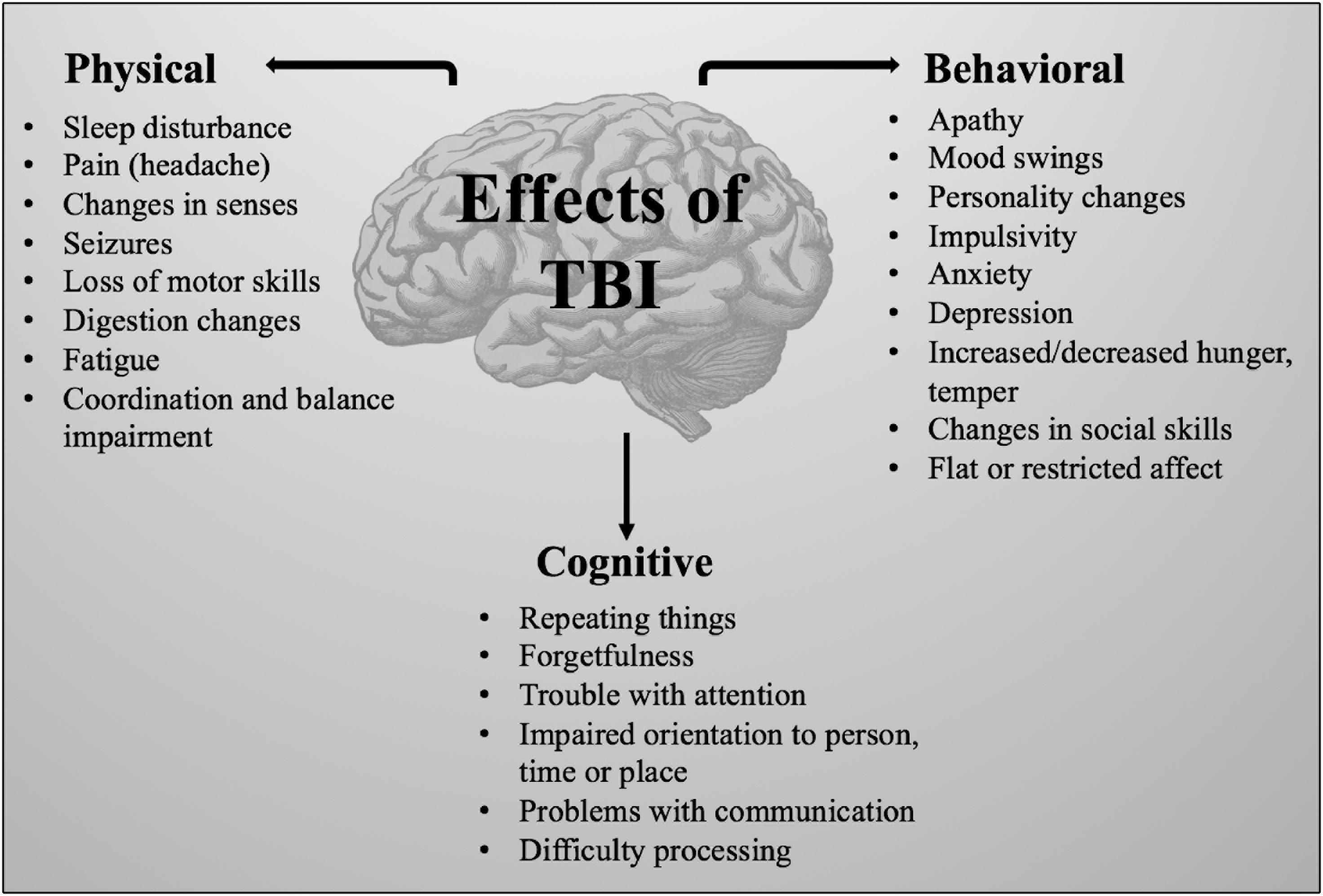 Черепно-мозговая травма: современные модели