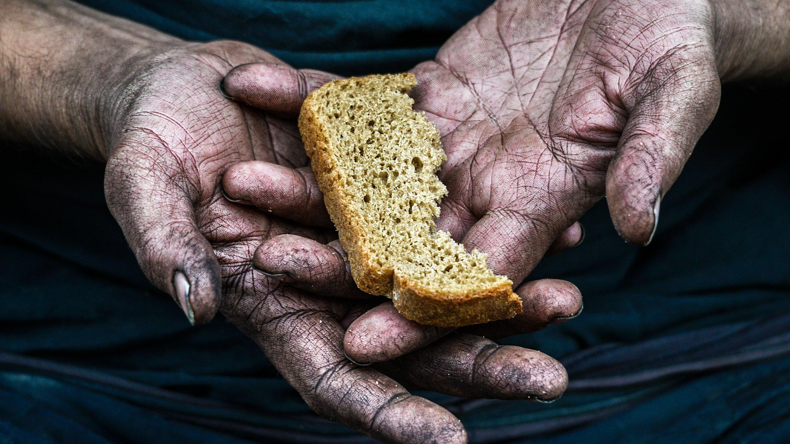 Голод важнее жажды, страха и общения