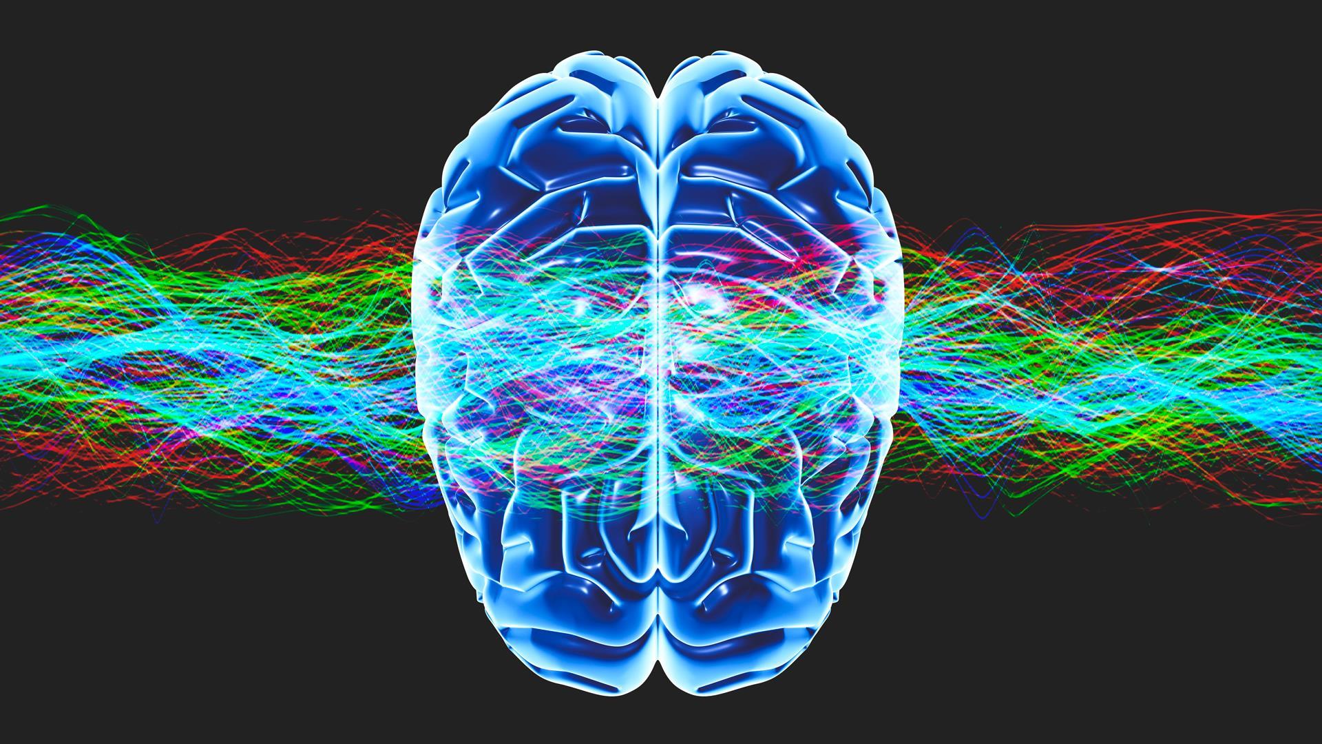Что такое «быть в сознании» с точки зрения нейронауки?