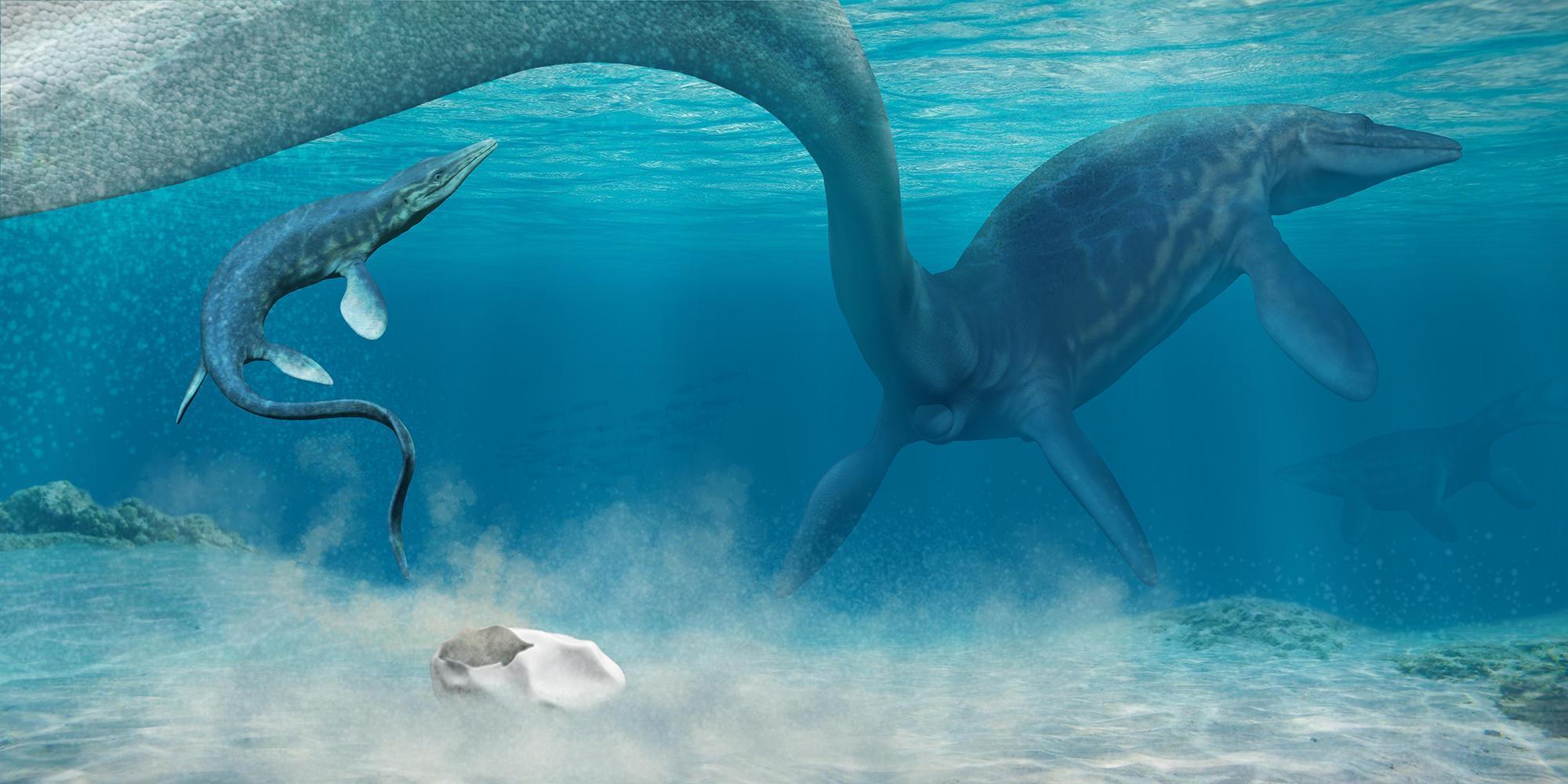 Ученые выяснили природу окаменелого «Нечто» из Антарктиды