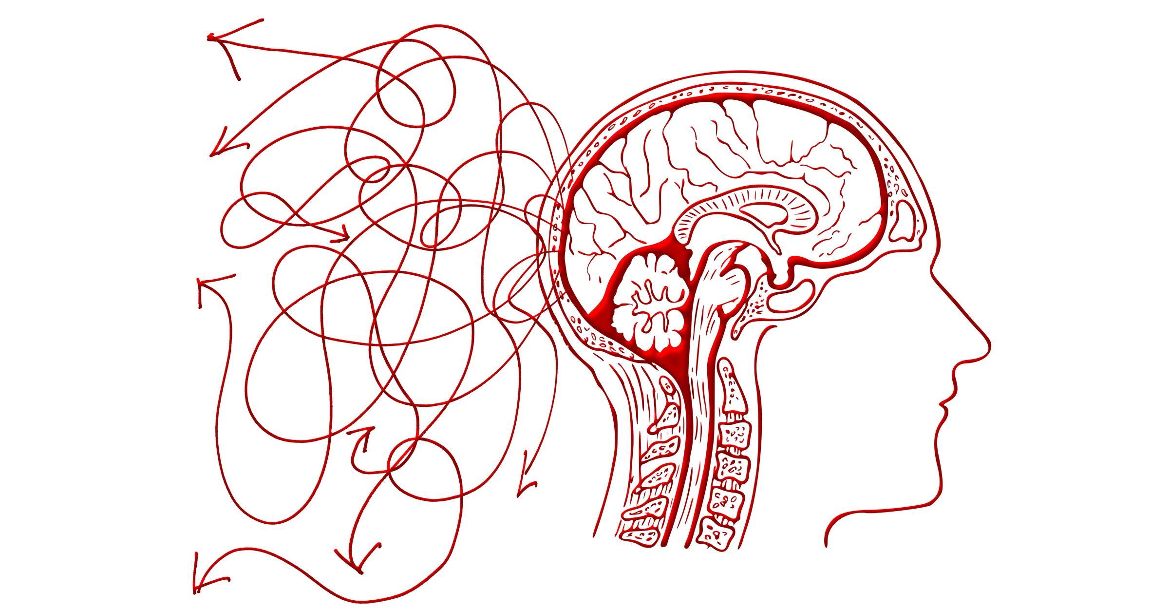 Что удерживает нас в сознании?
