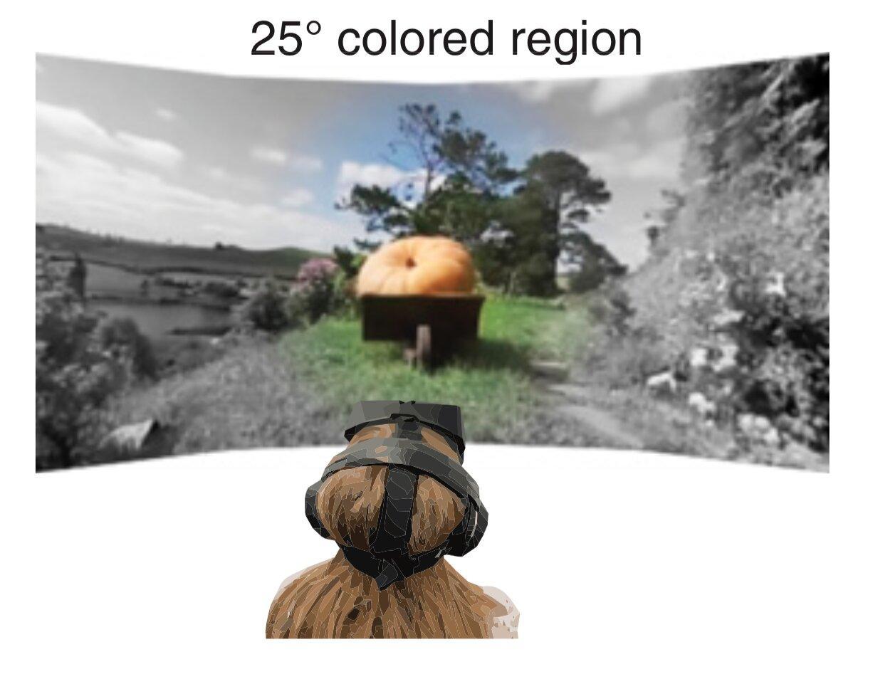 Цветное зрение слабеет к периферии