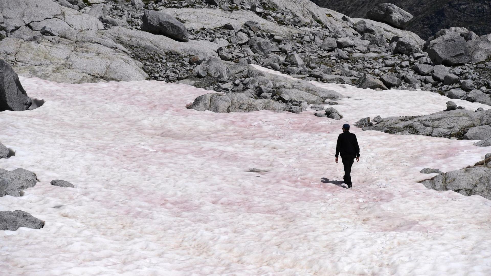 Розовый лед в Альпах назвали маркером точки невозврата в процессе глобального потепления
